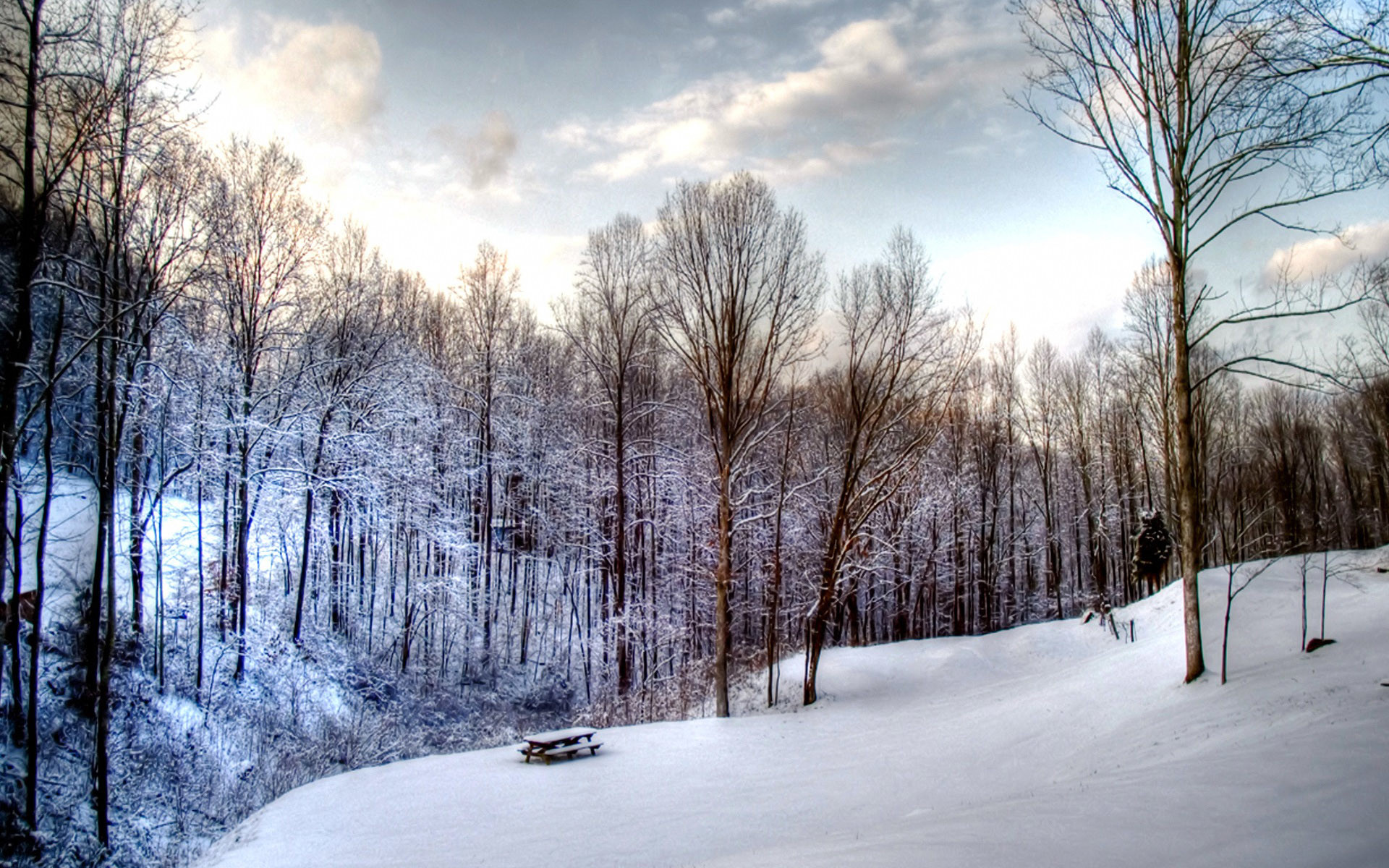 Animated Snow Scene Wallpaper 41 Images
