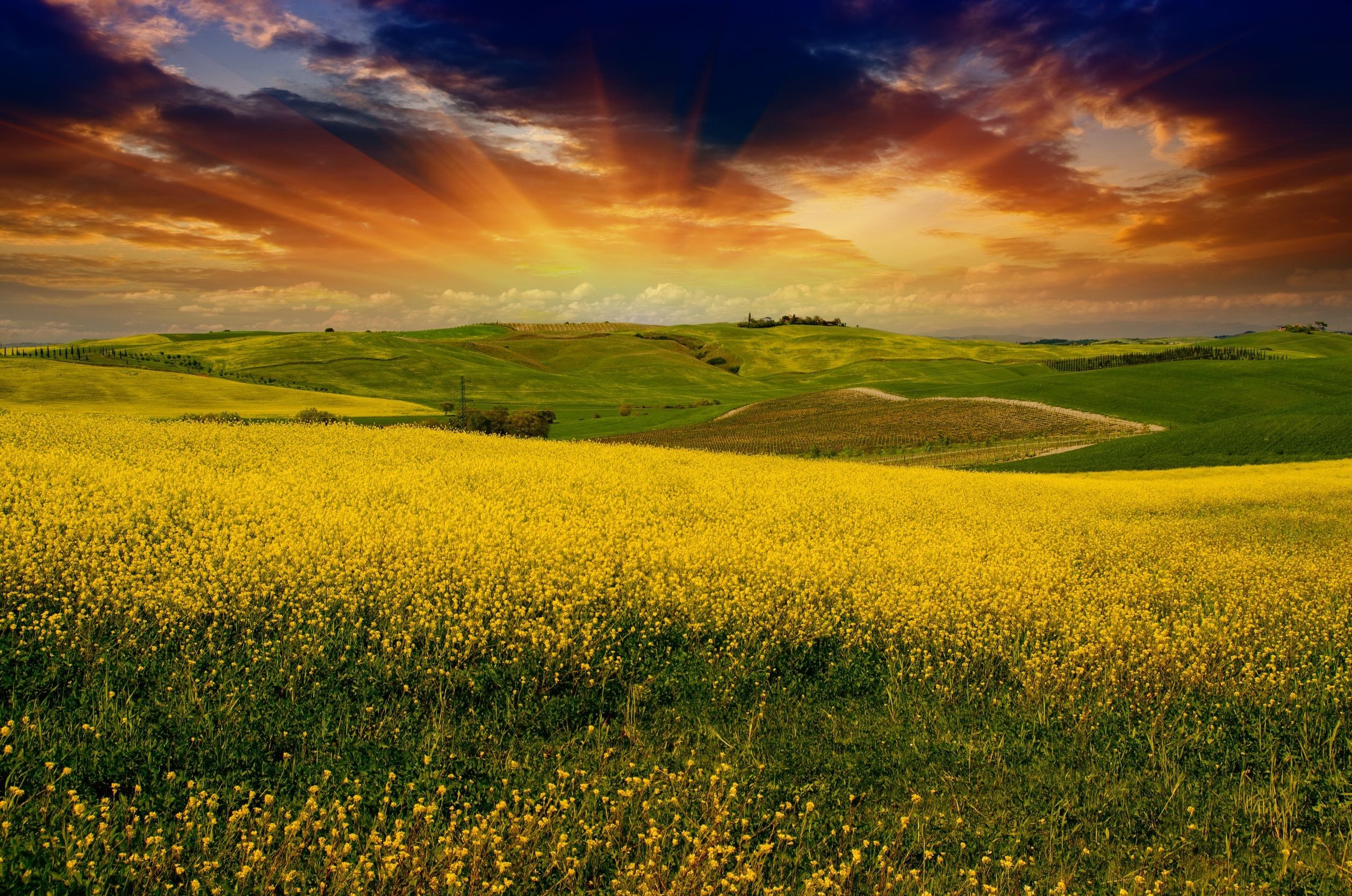 2516x1667 Tuscany Wallpaper (25)