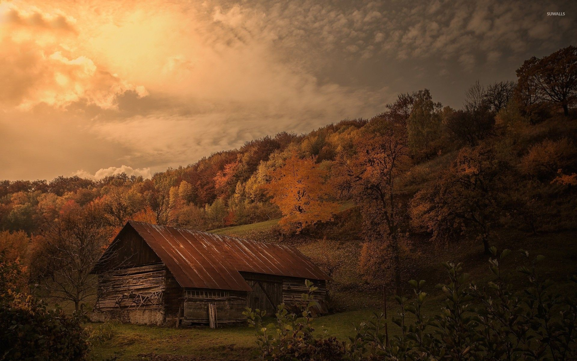 1920x1200 Old Barn In Autumn Forest Wallpaper