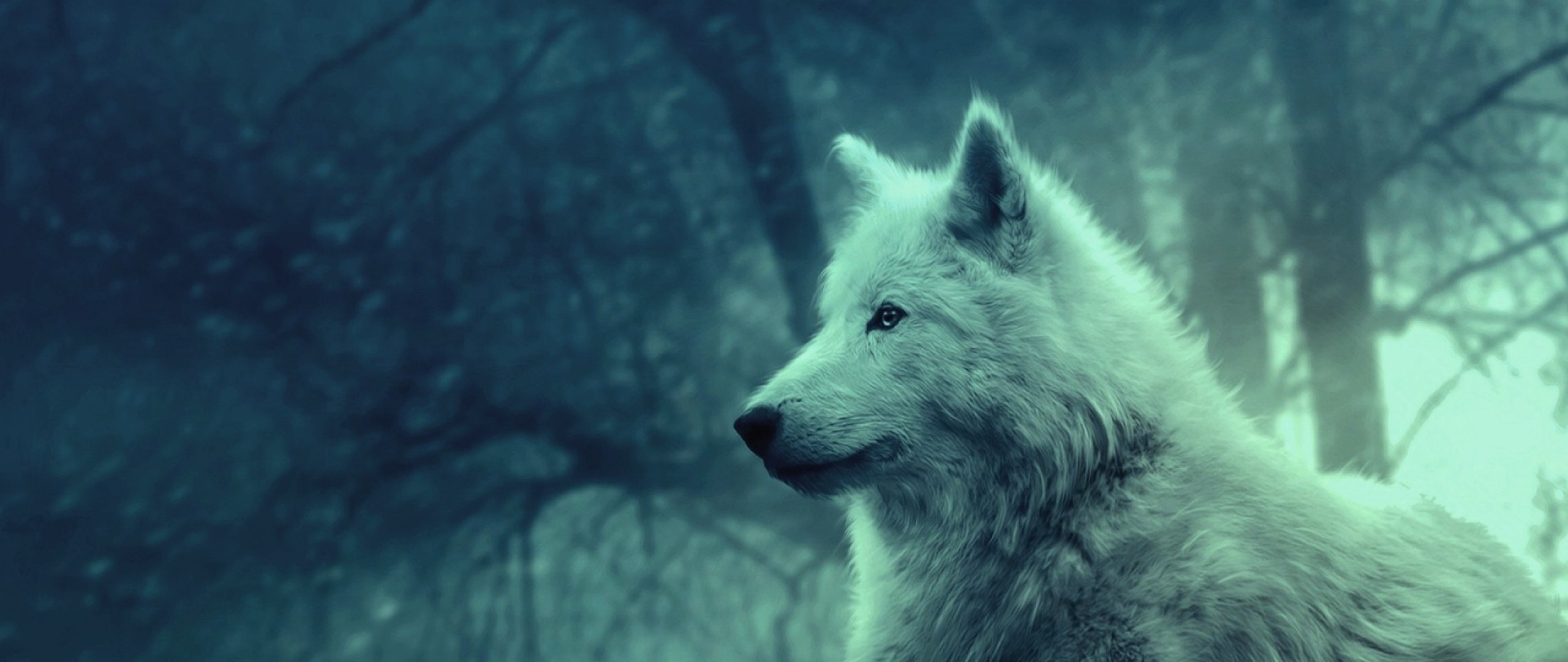 Wolf Howling Wallpaper (67+ images)