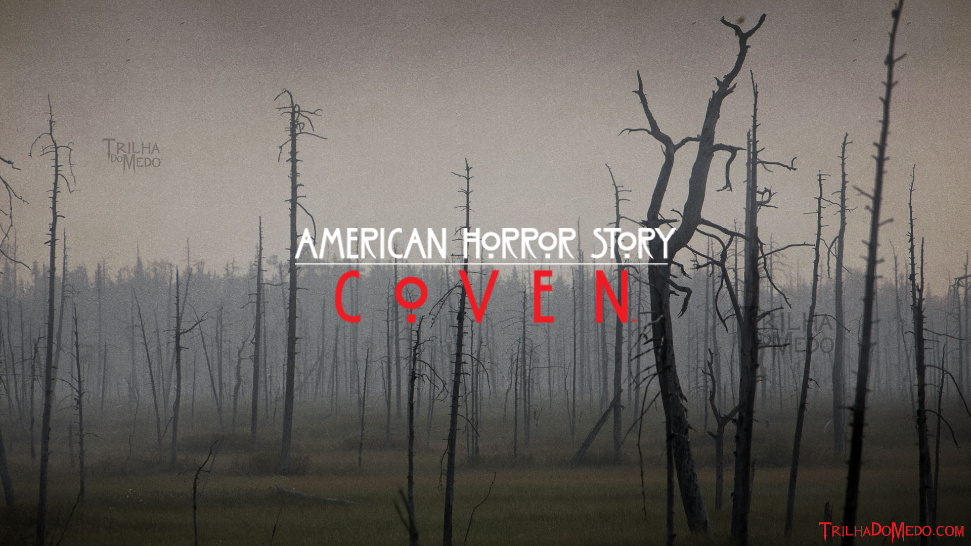 Ahs Wallpapers (62+ Images