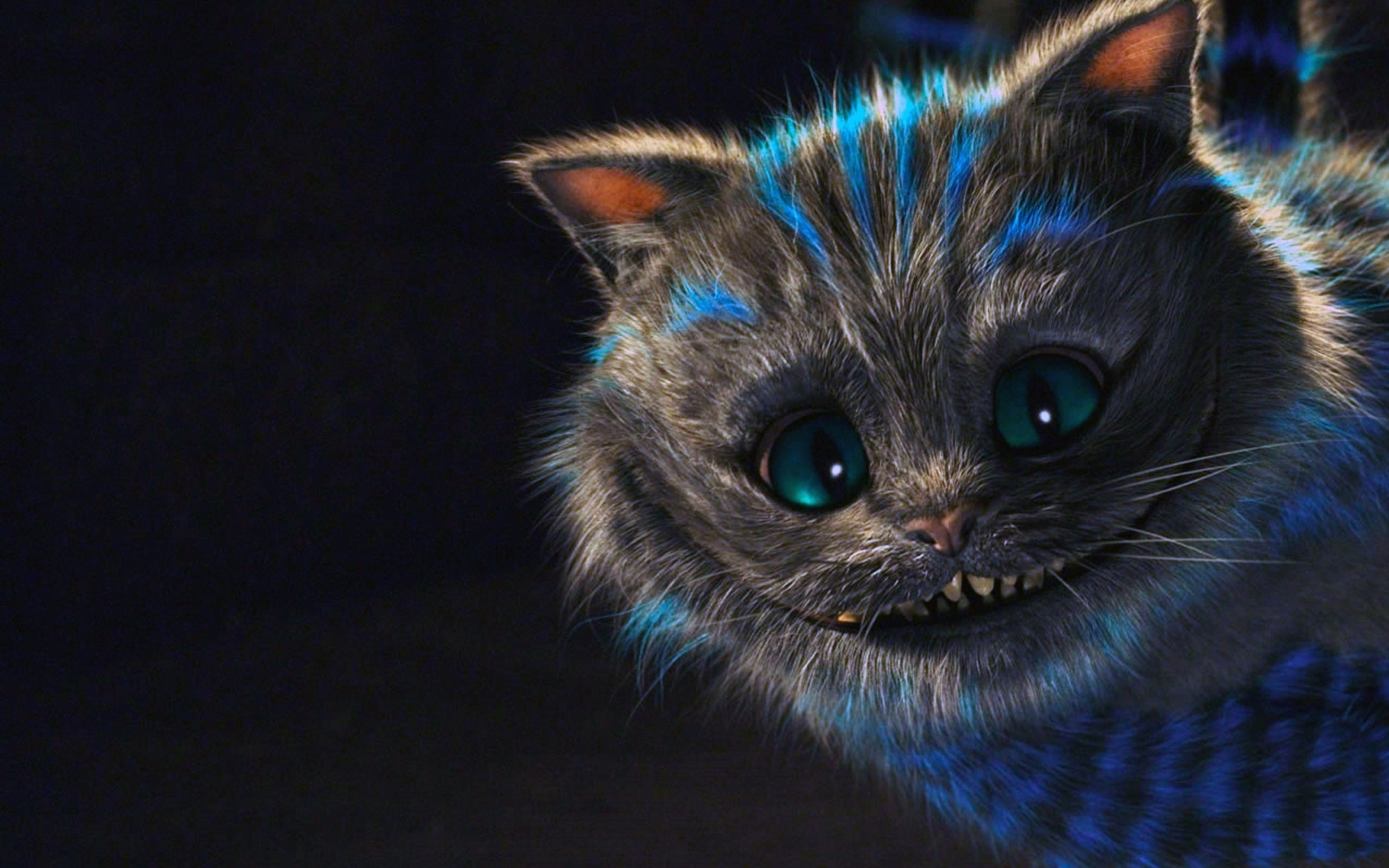 2560x1600 HD cheshire cat pictures tumblr.