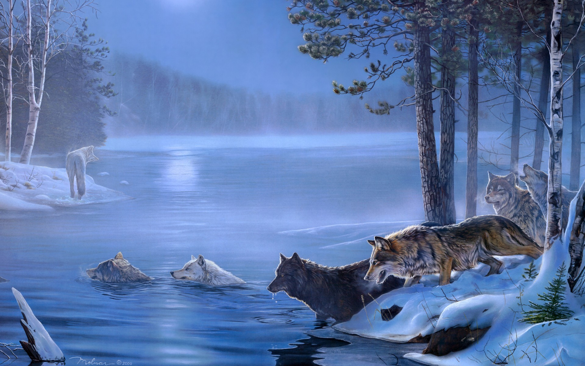 1920x1200 Art Paintings Wolf Wolves Landscapes Trees Forest Lakes Rivers Night Moon  Light Wallpaper Pictures HD.
