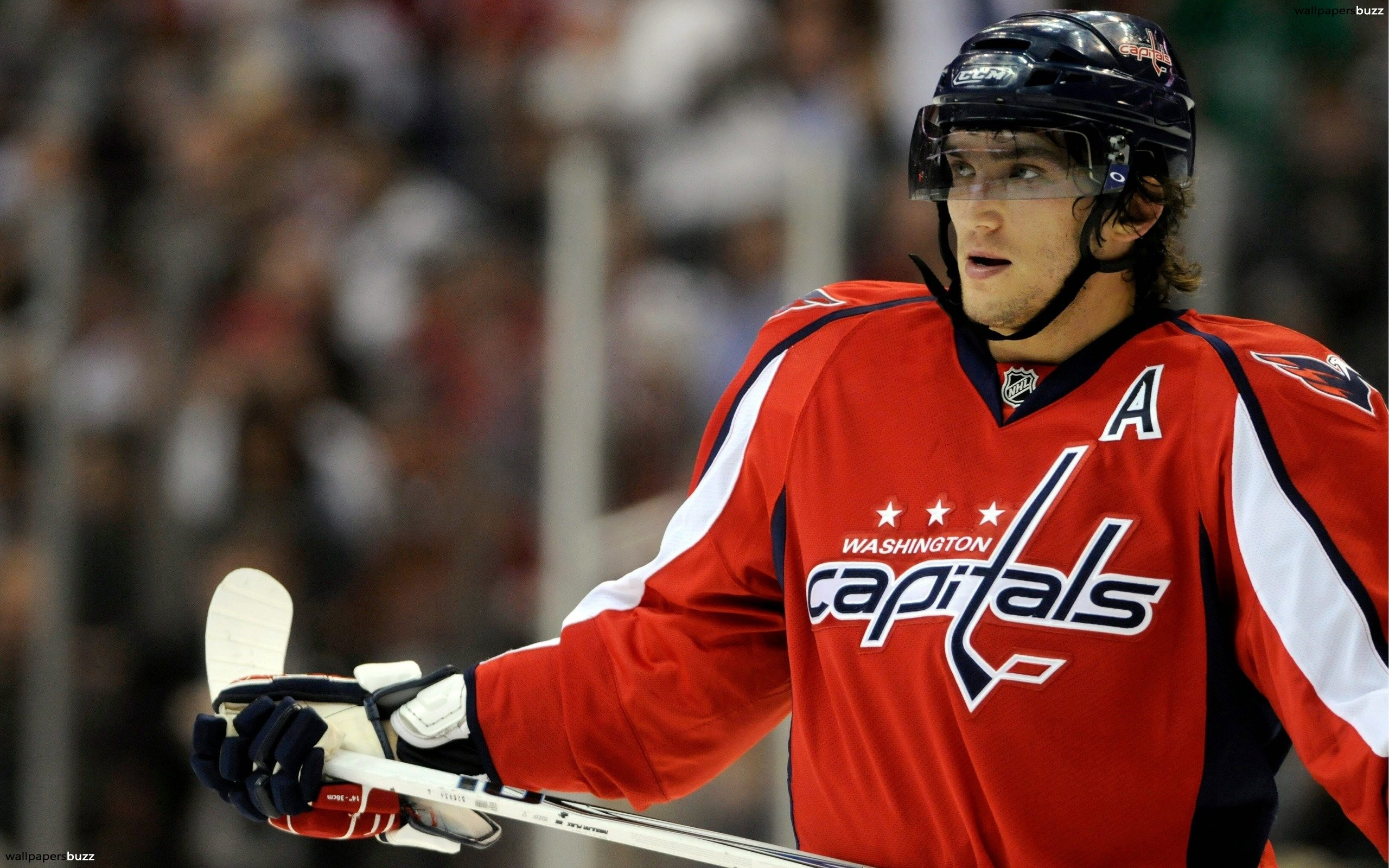 2560x1600 A Washington capitals player