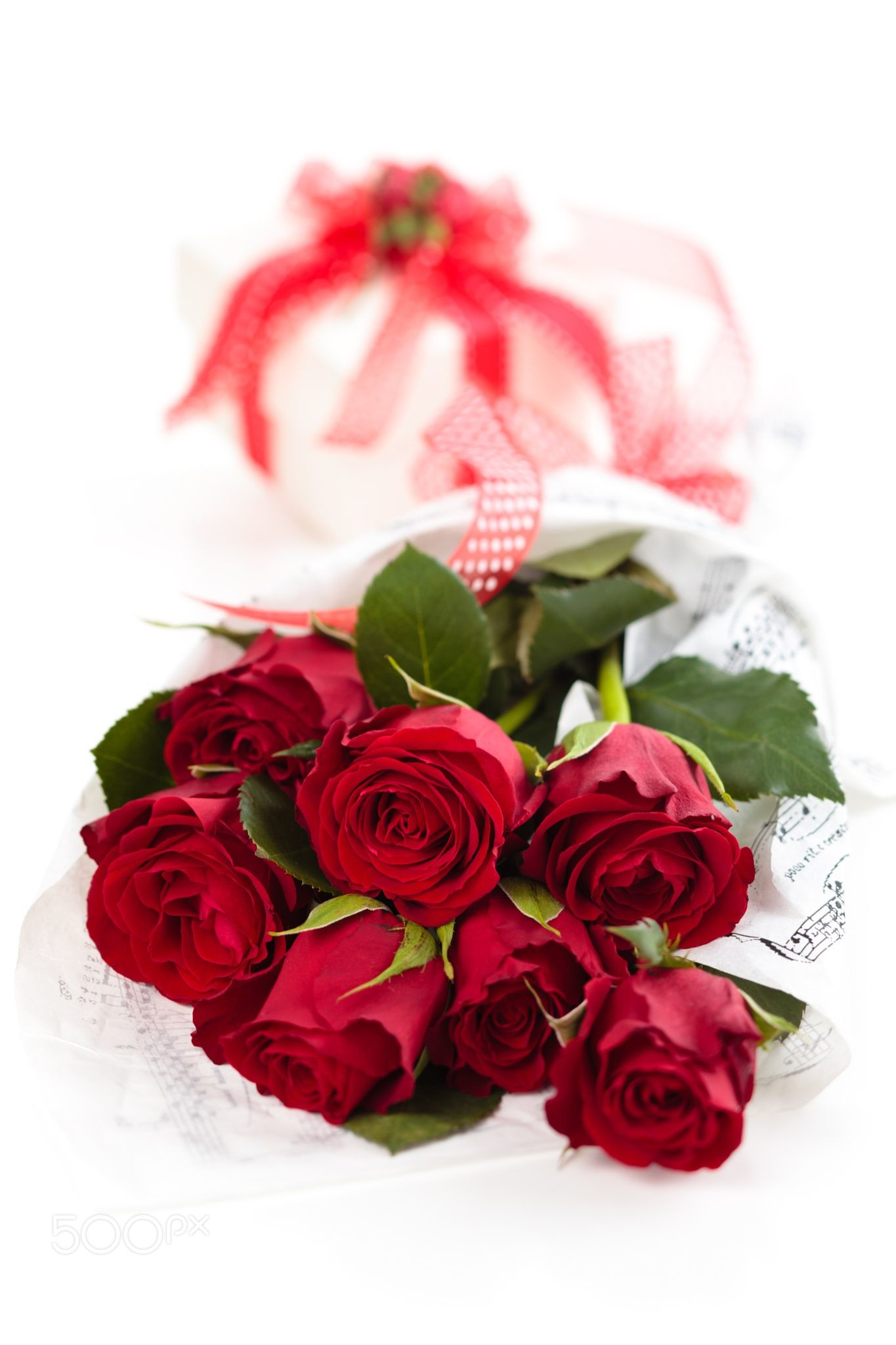 1365x2048 Red roses and gift. - Bouquet of red roses and gift. Isolated on white  background.