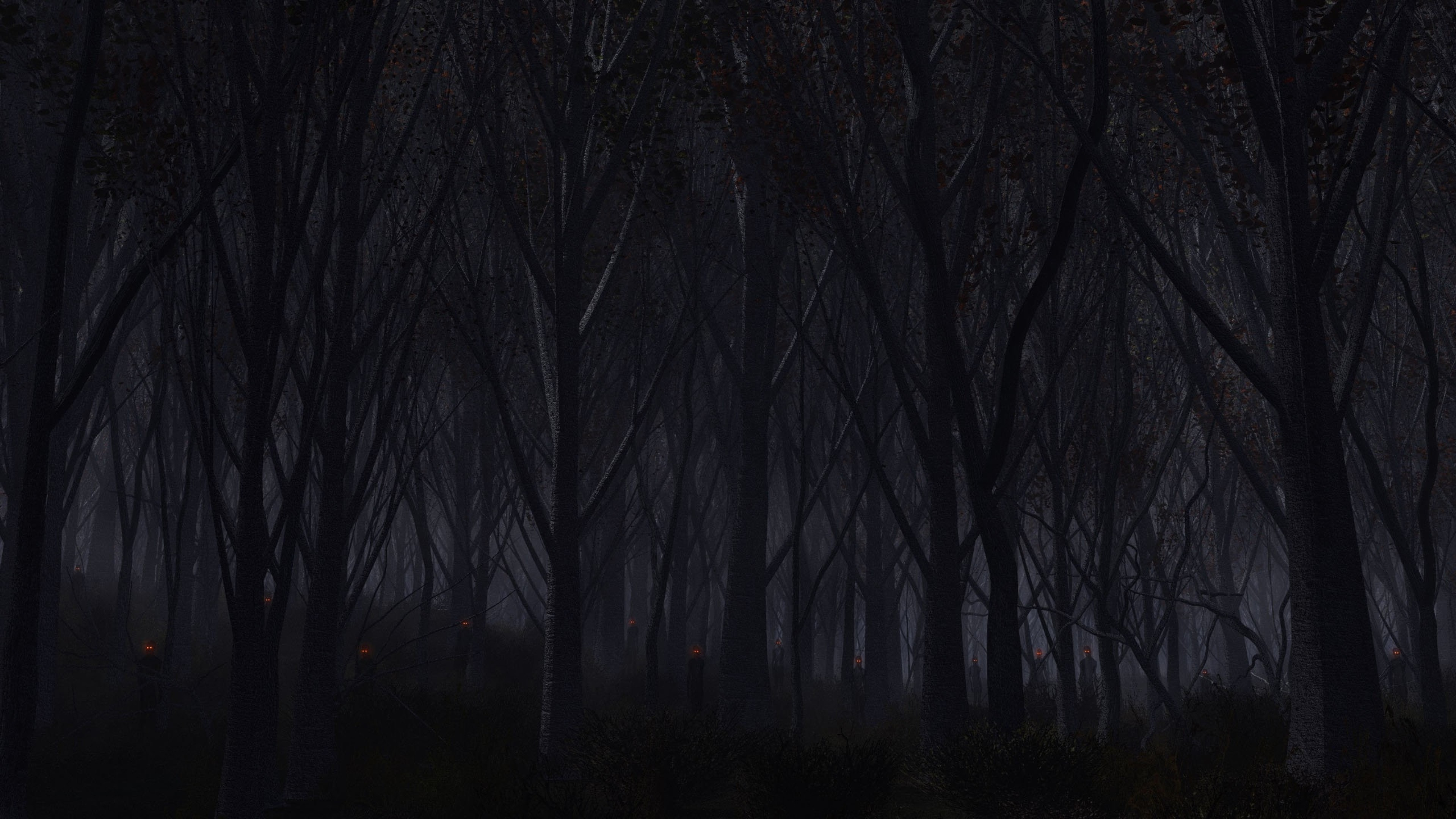 3840x2160 Preview wallpaper forest, trees, background, dark