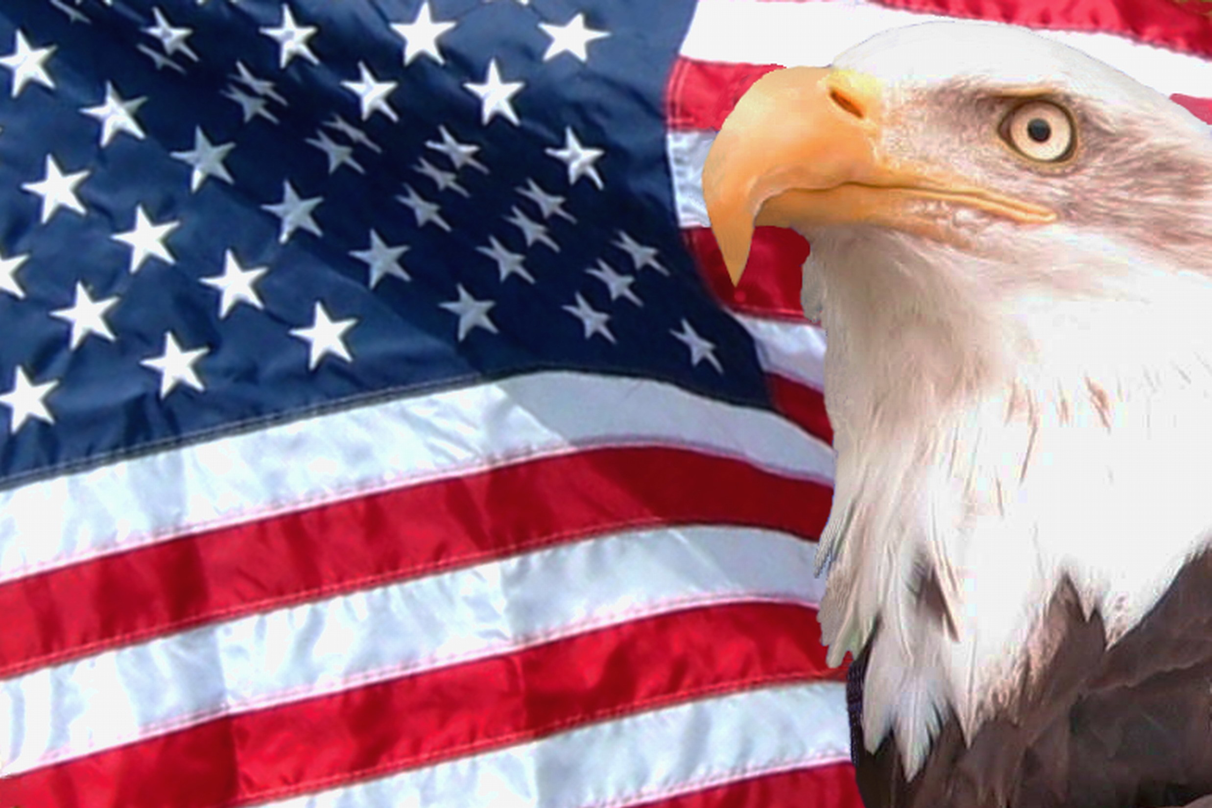 2475x1650 hd american flag with eagle background