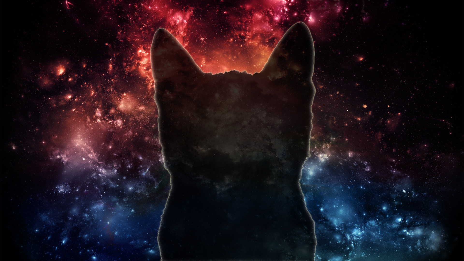 Space cats hd wallpaper 78 images - Space backgrounds 1920x1080 ...