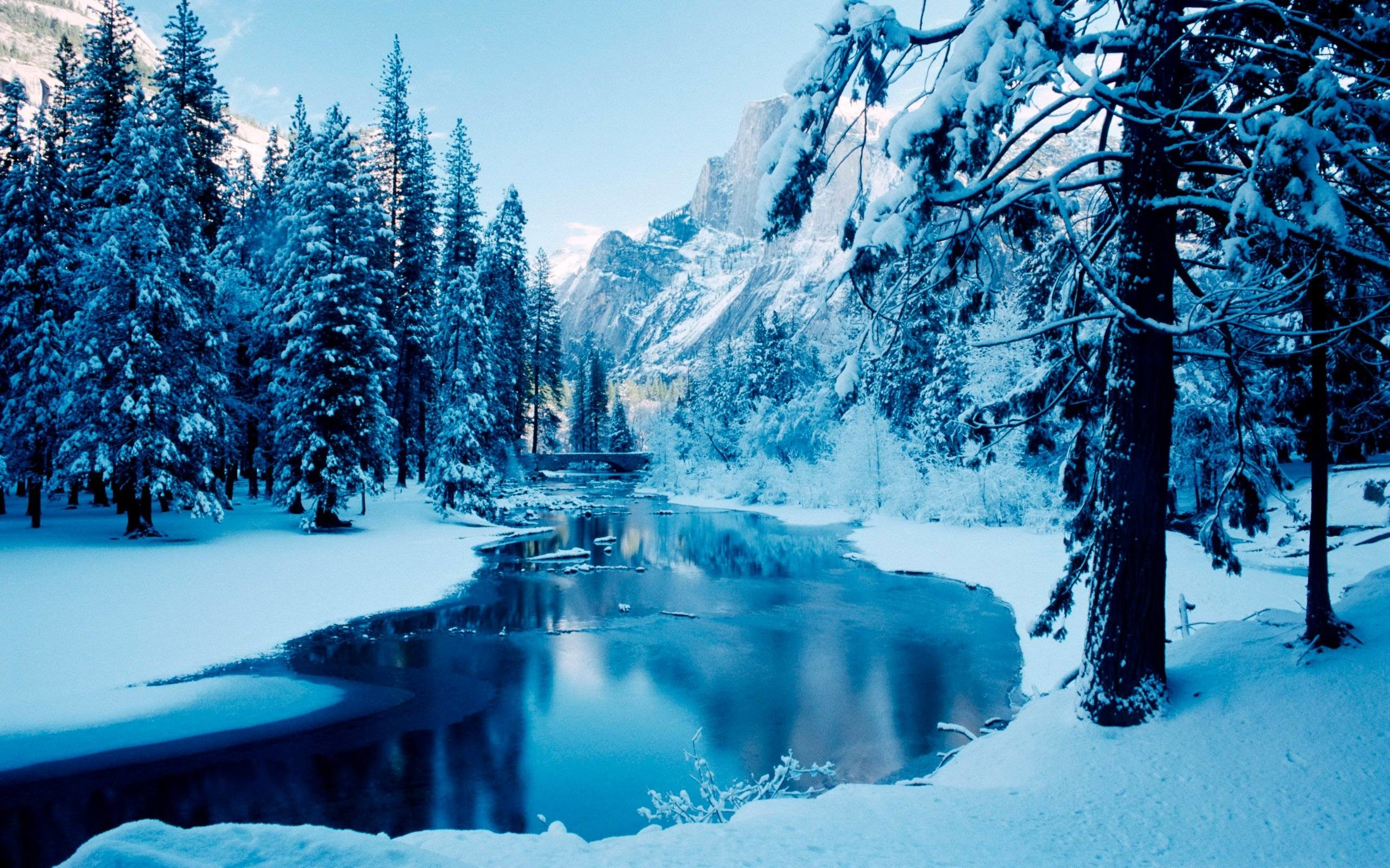 2560x1600 Winter Backgrounds For Computer - Wallpaper Cave
