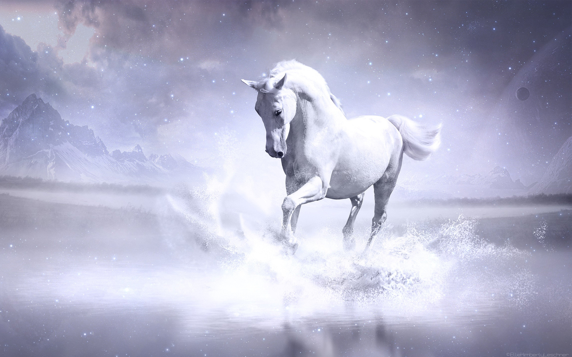 Cool Horse Backgrounds 57 Images