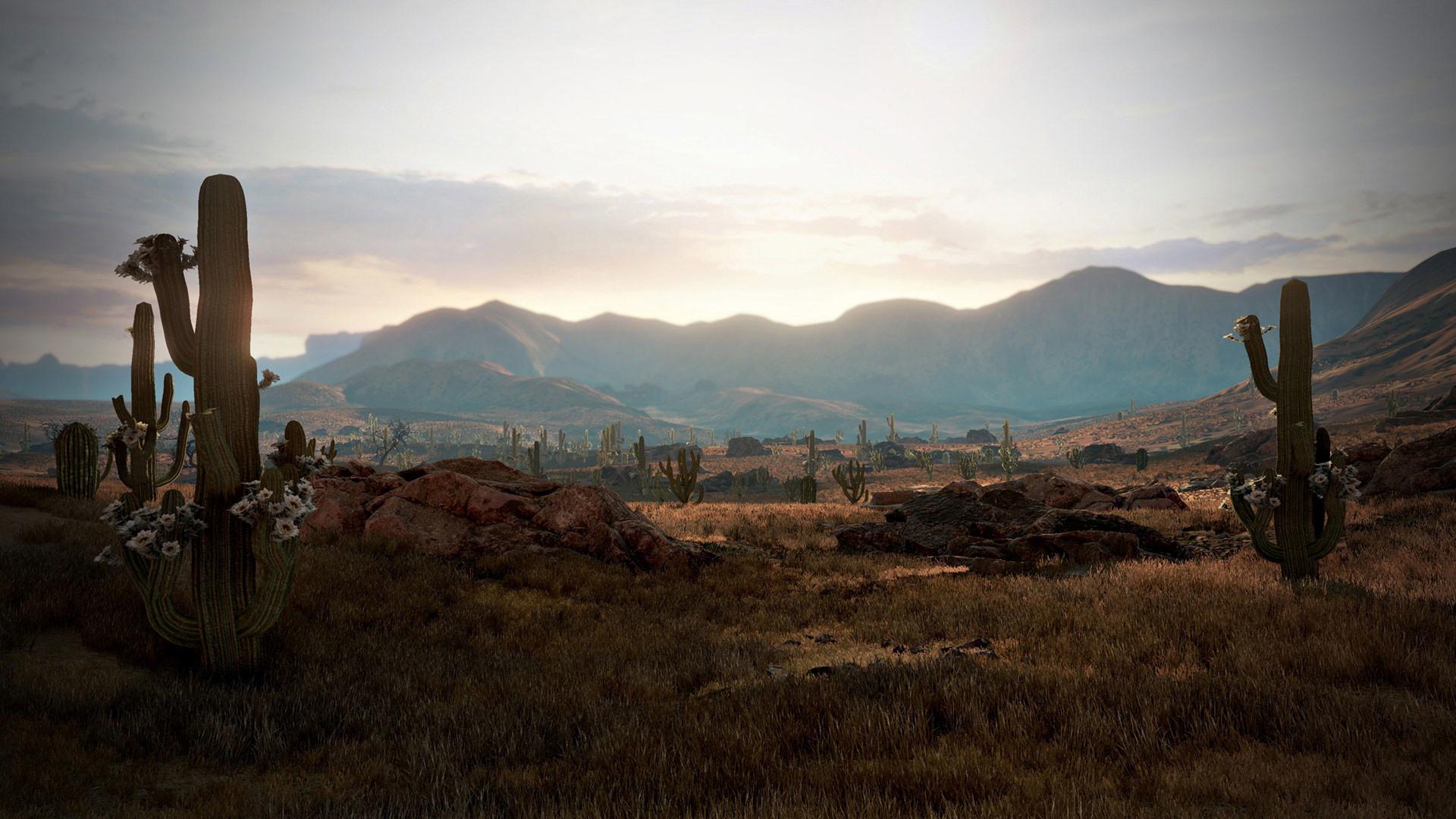 Wild Wild West Background