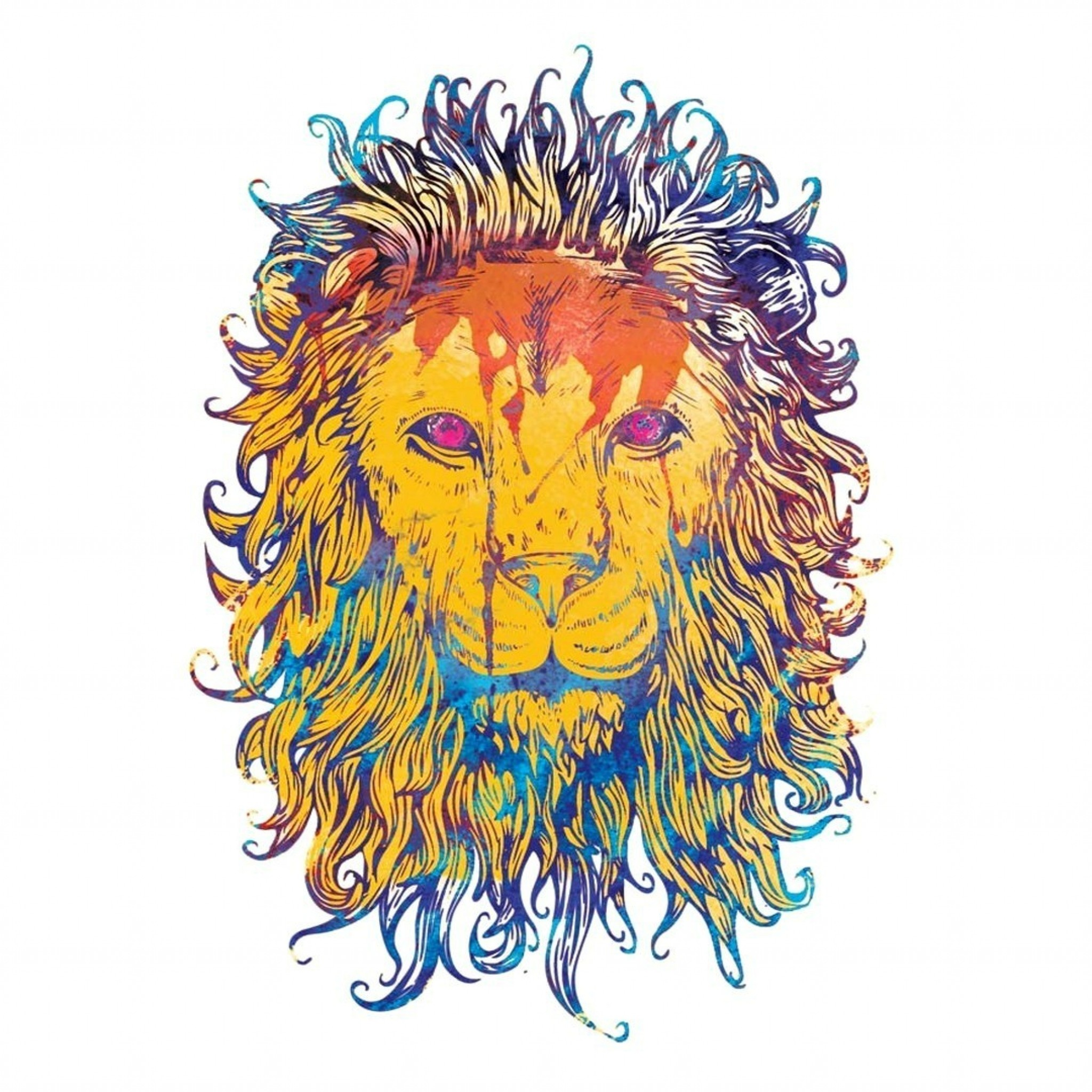 2048x2048  Wallpaper lion, drawing, colorful, king, king of beasts