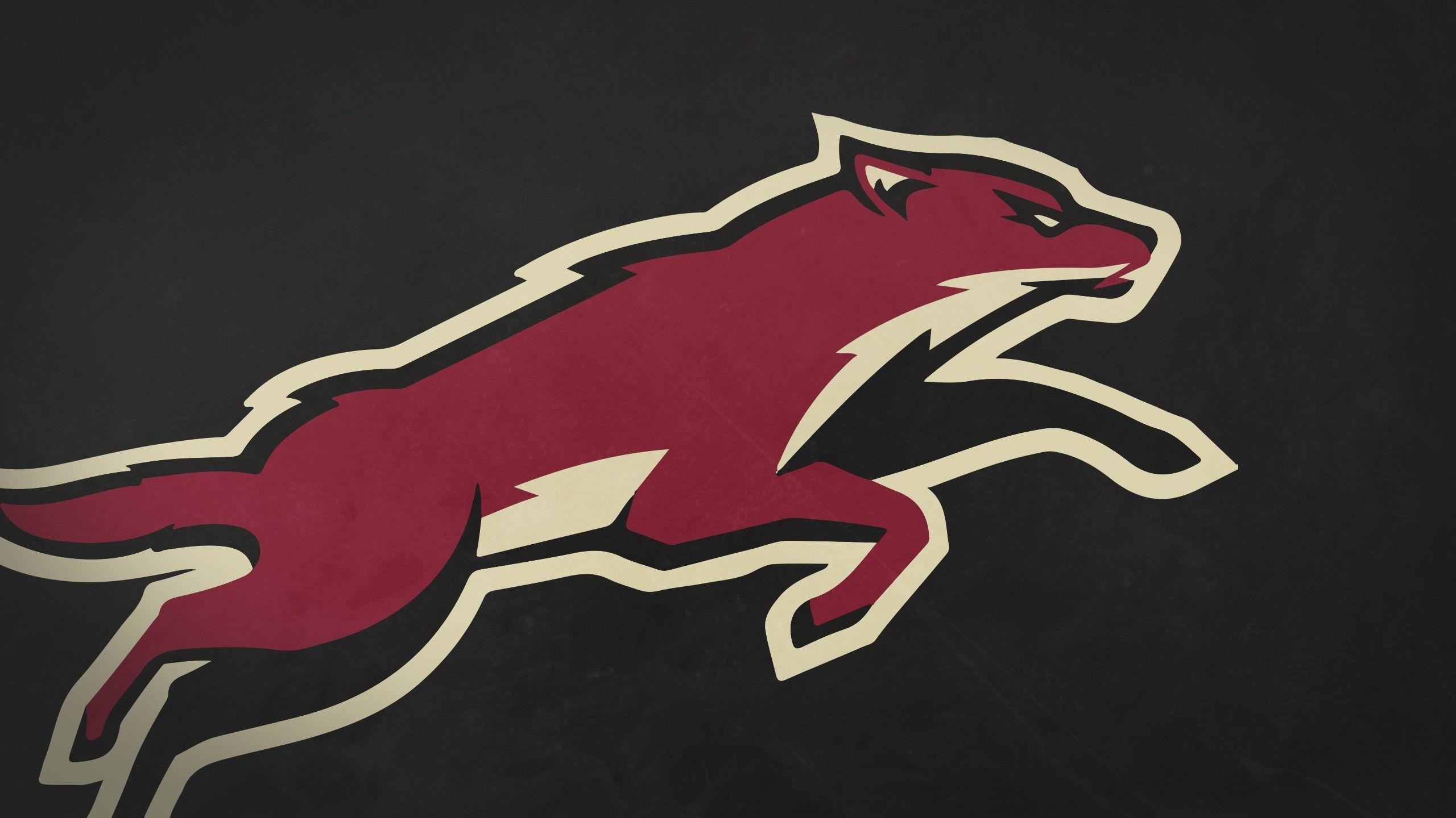 2560x1440 Phoenix Coyotes Wallpaper 15330  px ~ HDWallSource.