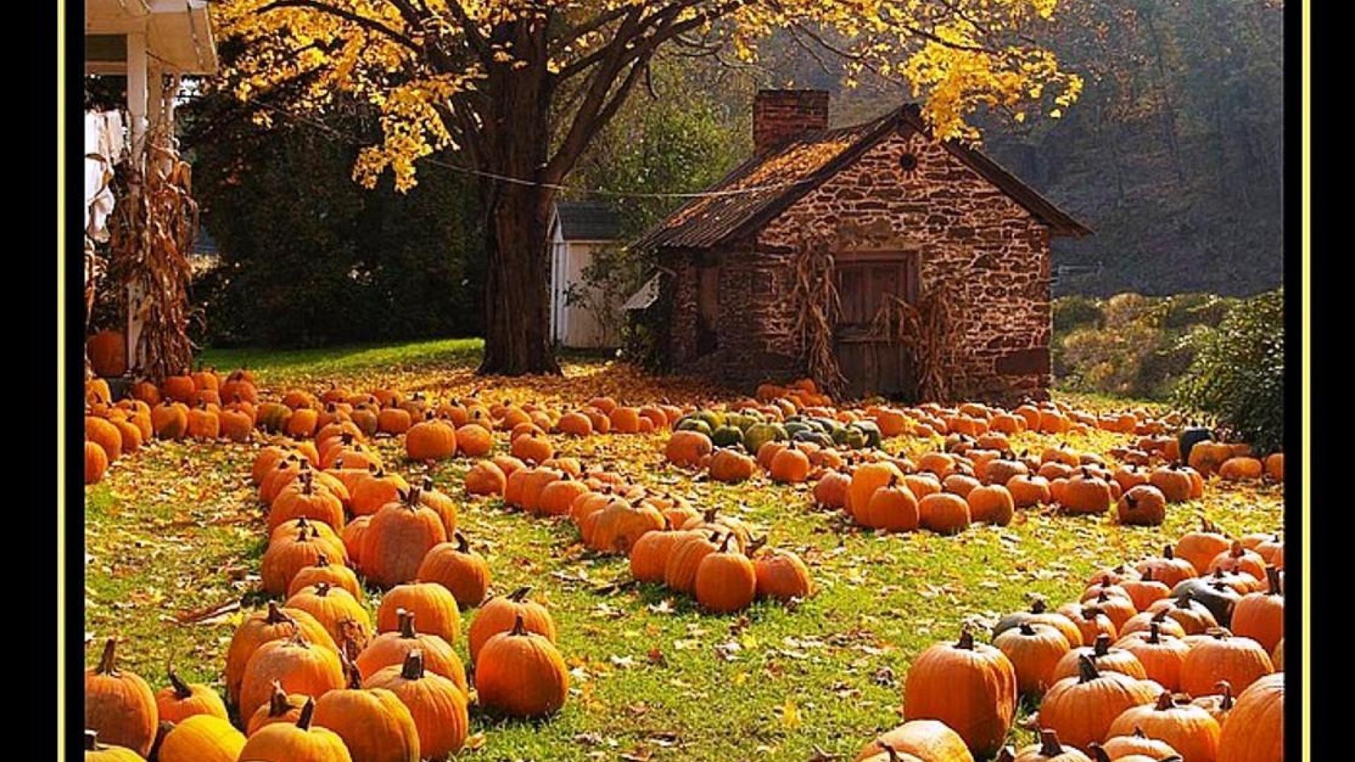 halloween celebrated britain