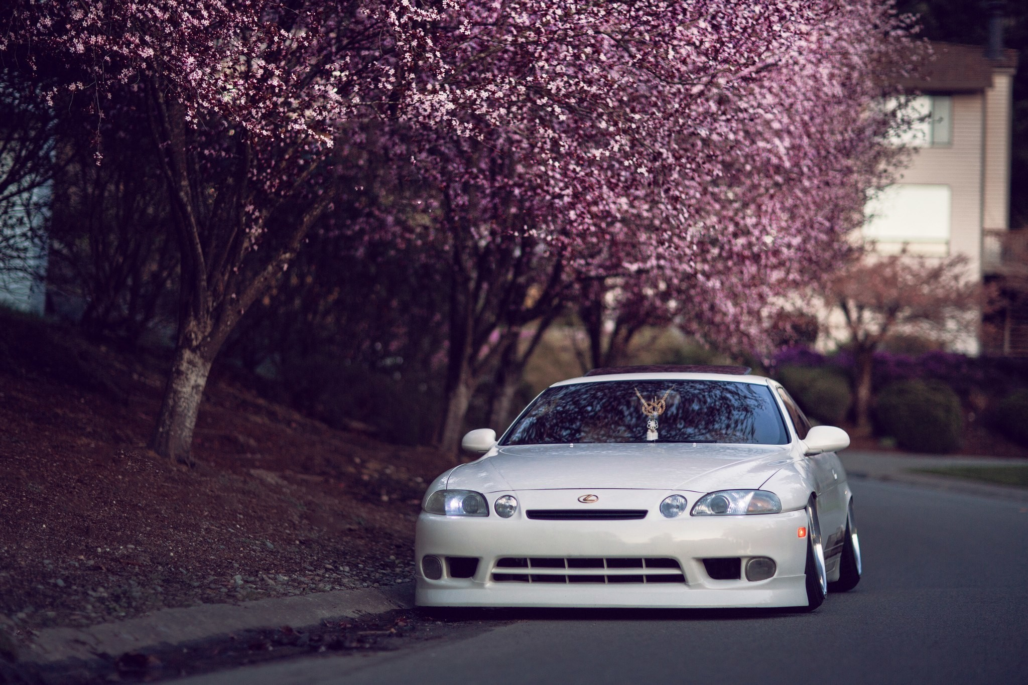 Tuned Car Wallpapers 65 Images