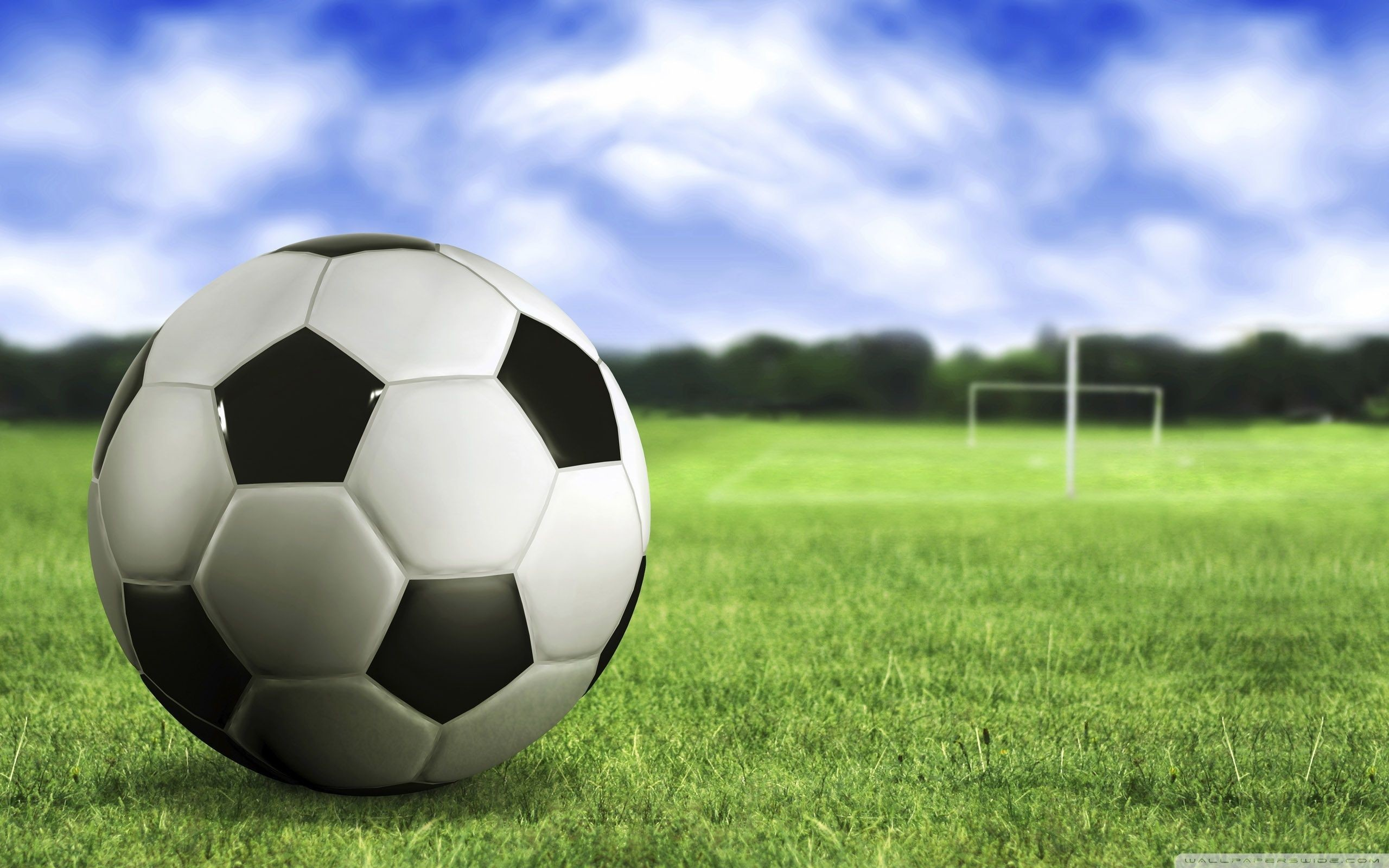 2560x1600 Green grass, Blue sky, Soccer ball, Soccer field wallpapers and .