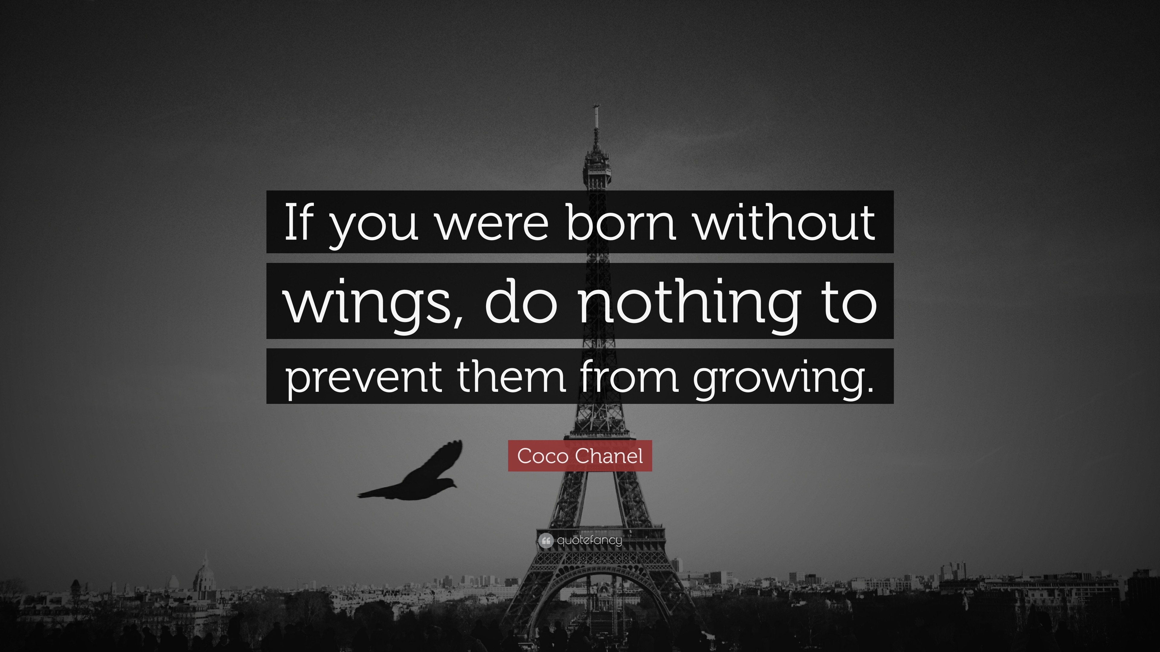 "3840x2160 Coco Chanel Quote: ""If you were born without wings, do nothing to prevent"