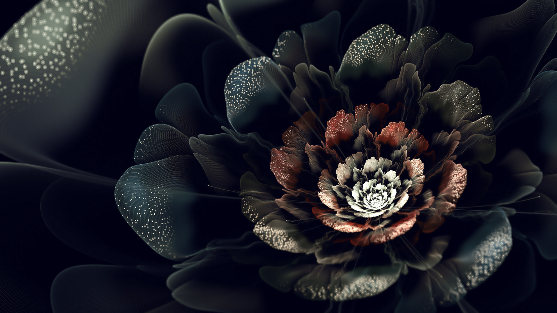 Dark Roses Hd Wallpapers: Flowers On Black Background Wallpaper (77+ Images