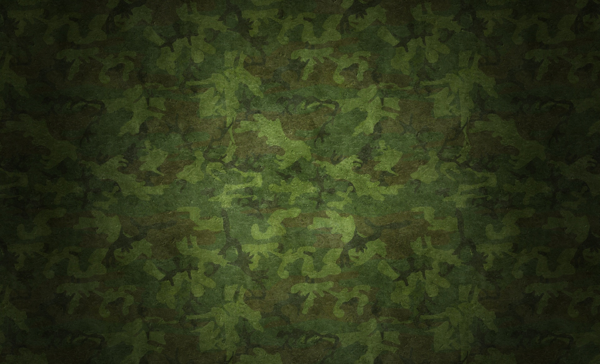 1920x1167 Camouflage HD and Desktop Backgrounds #6466
