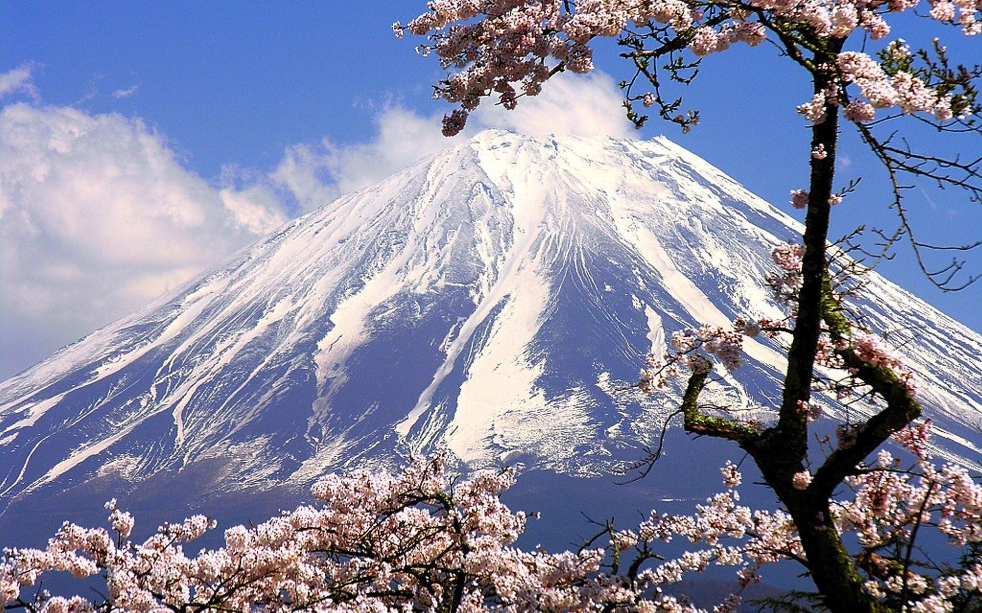 4K Nature Wallpaper Spring Japan (45+ images)