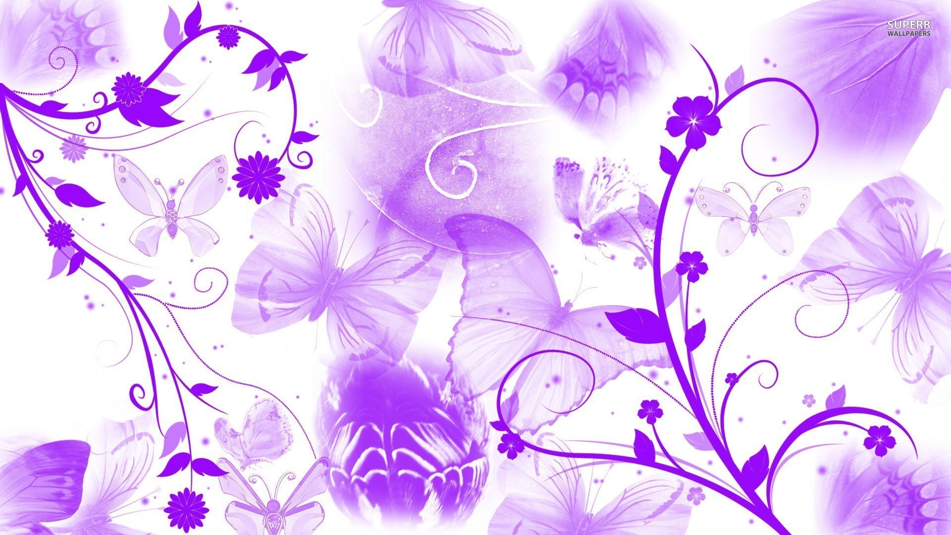 pink and purple butterfly wallpaper 65 images