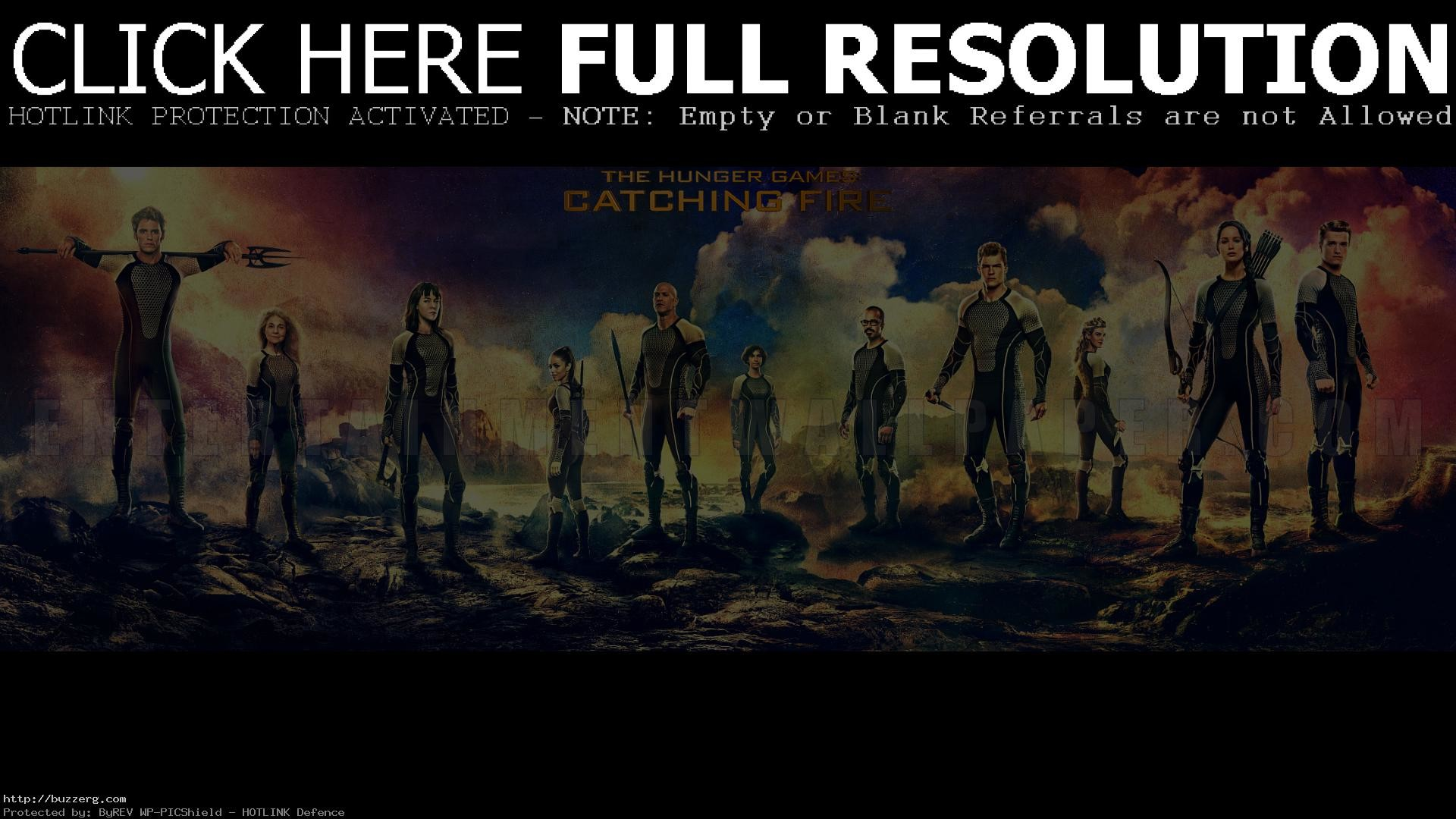 1920x1080 The Hunger Games Catching Fire At Movies (id: 182865)