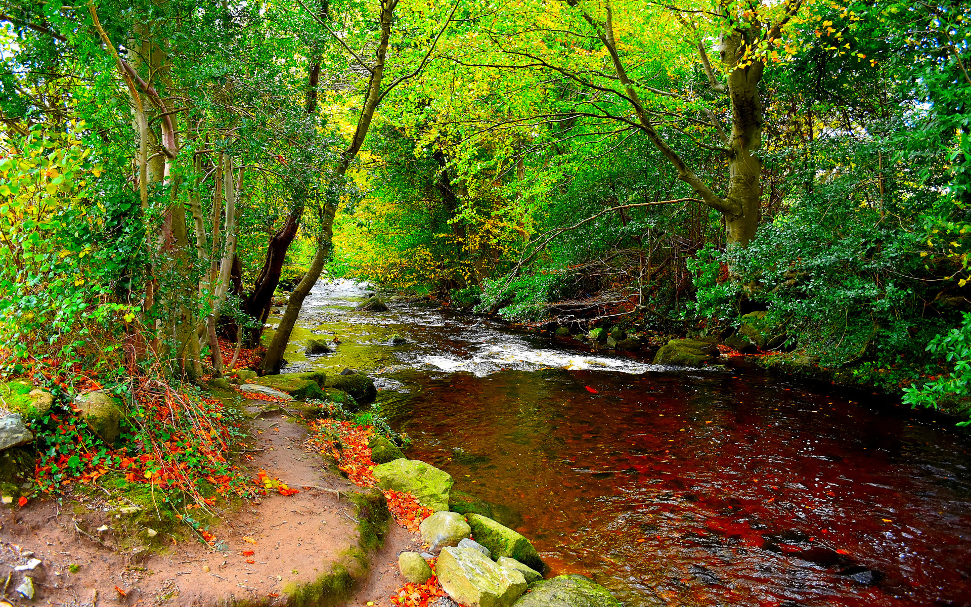 1920x1200 Bild: Bright Green Bäume & Red Creek wallpapers and stock photos. «