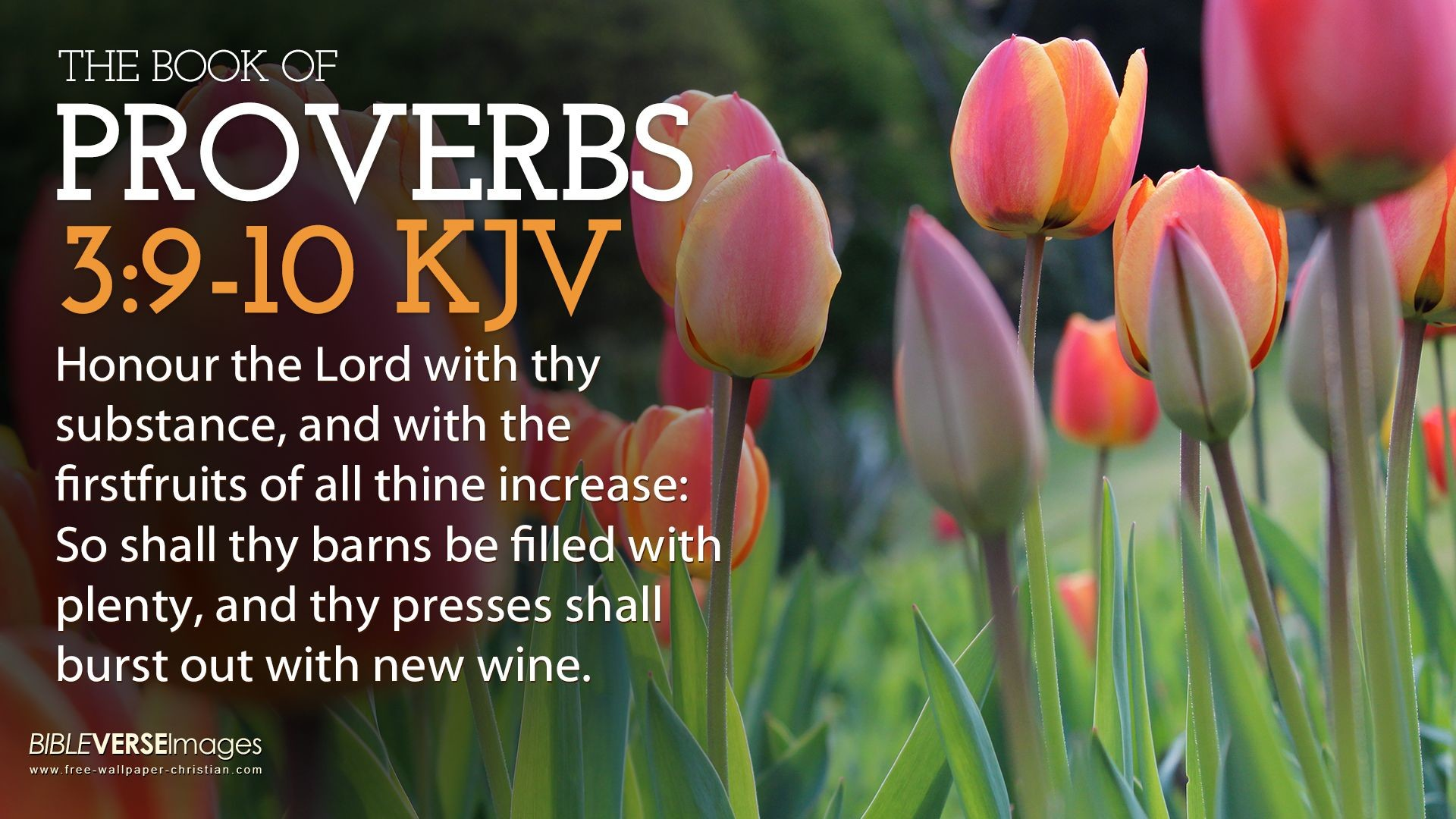 1920x1080 10 King James Version Bible Verse Wallpaper Proverbs 3:
