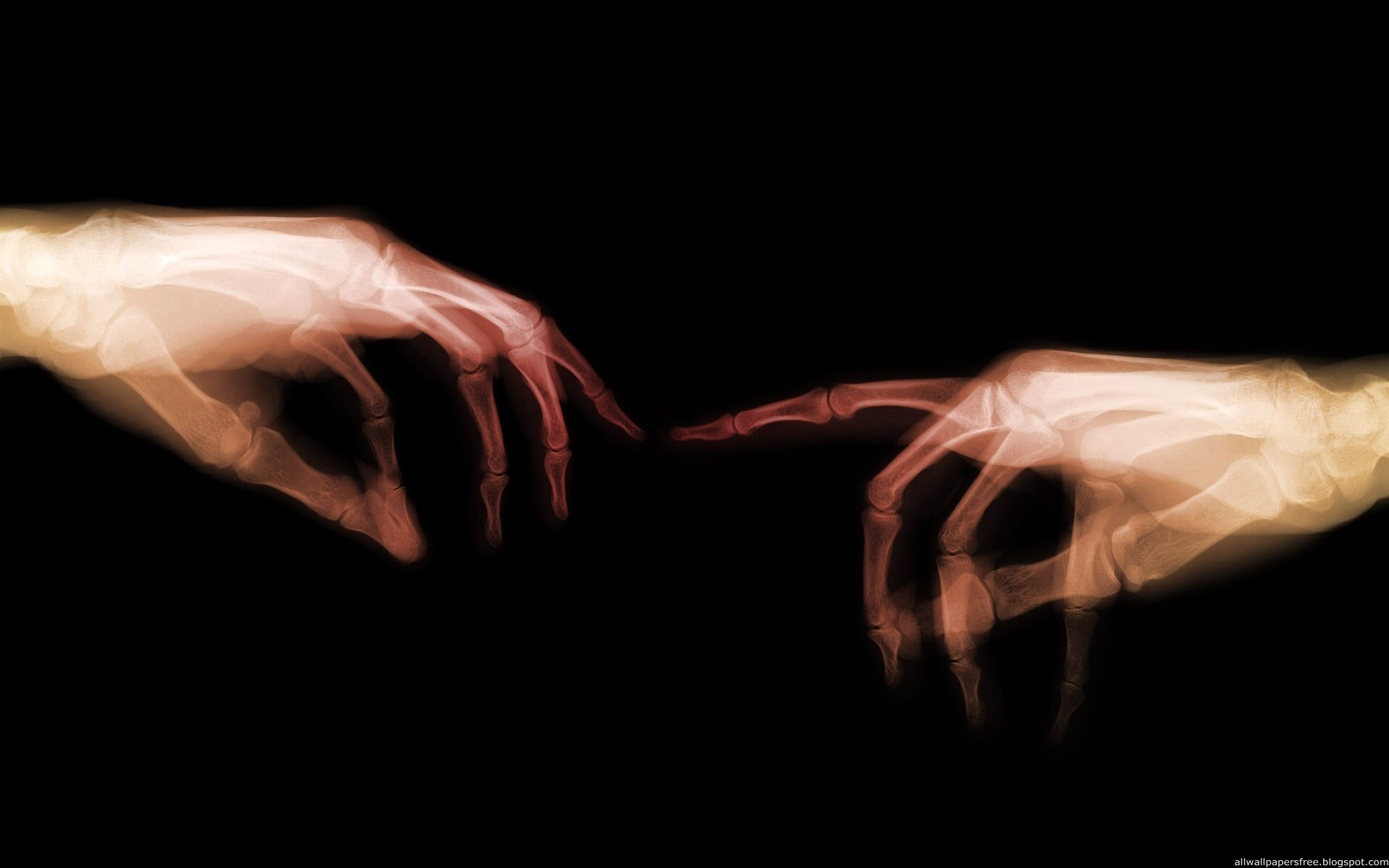 1920x1200 X Ray Hands wallpapers and stock photos