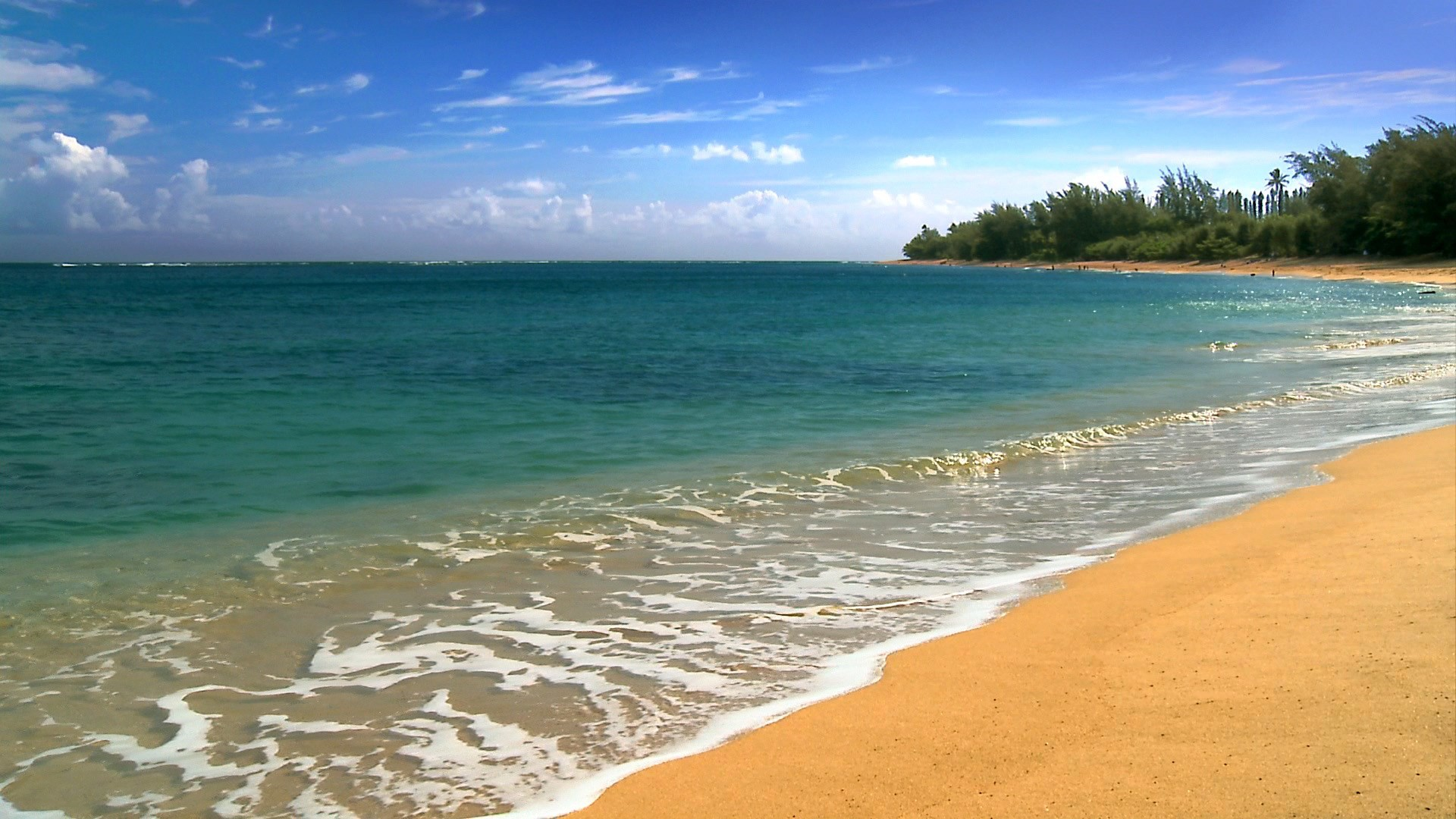 1920x1080 Hawaii Five Cities Beach HD Desktop Wallpaper