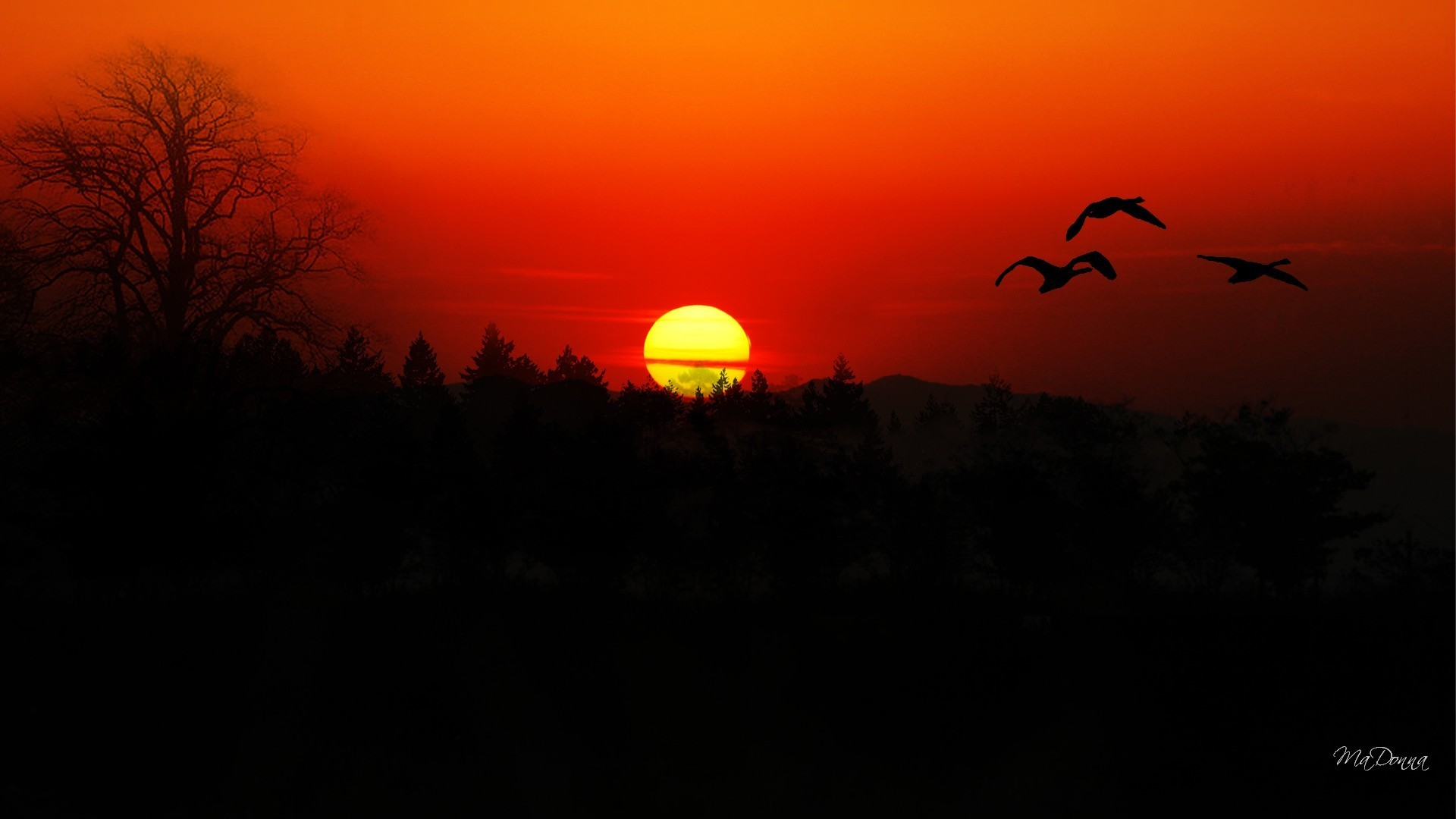 1920x1080 Evening Red Sun Mountains Flight Birds Bright Forest Geese Trees Sky Sunset Orange  Wallpaper Ipad