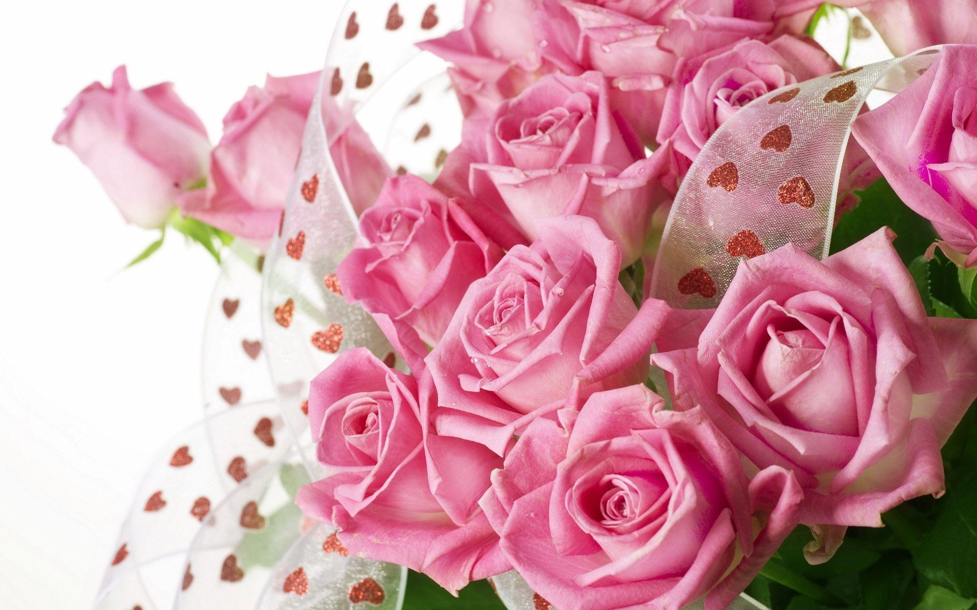 1920x1200 Pink roses bouquet with drops of water Wallpaper