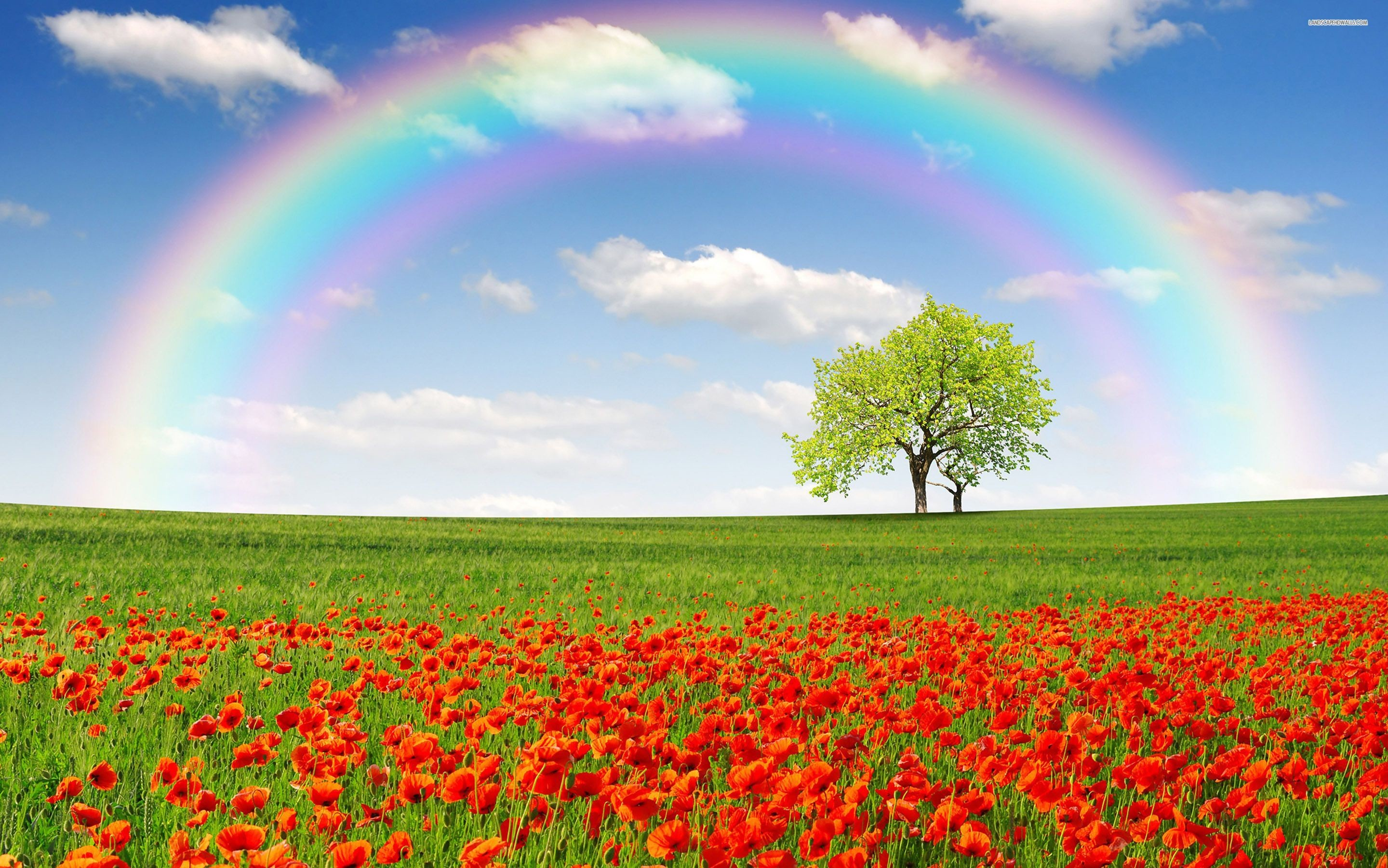 2880x1800 Rainbow Wallpapers - Full HD wallpaper search | RAINBOWS | Pinterest .