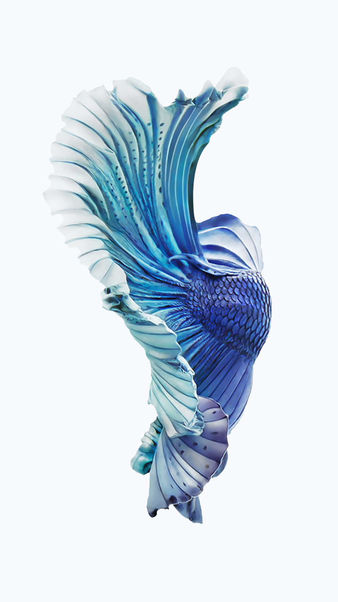 iphone 6s fish wallpapers (75 images)1080x1921 iphone 6s silver blue fish wallpaper png (1080Ã