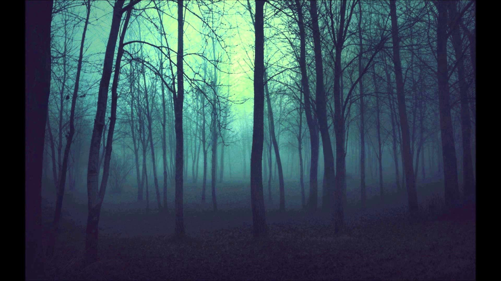 1920x1080 Dark Woods Background Download Free.
