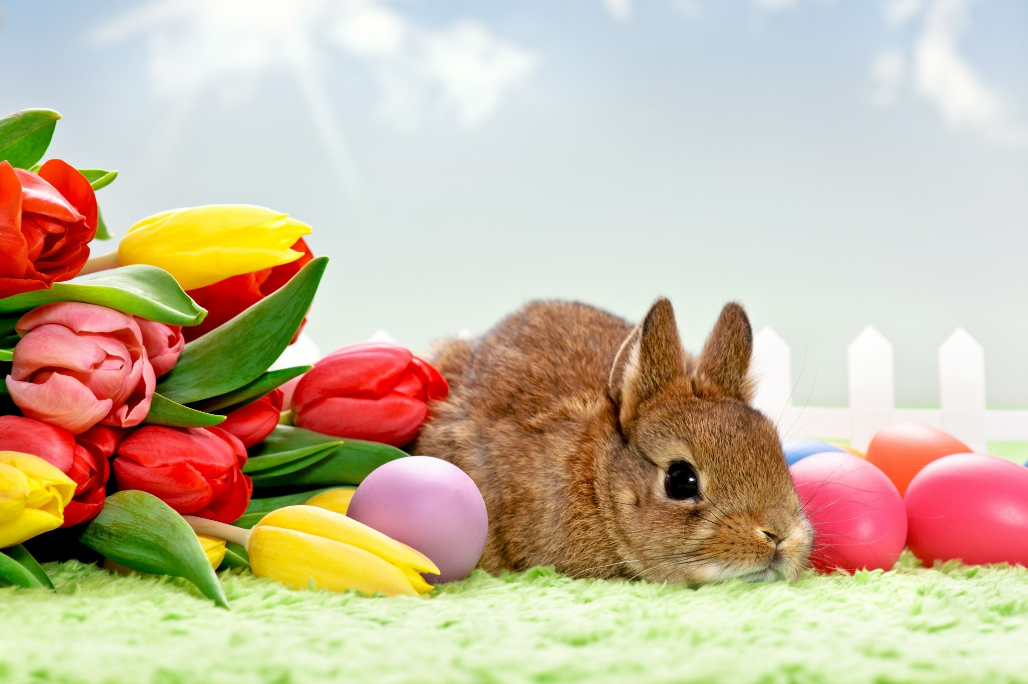 2048x1362 easter pictures for desktop