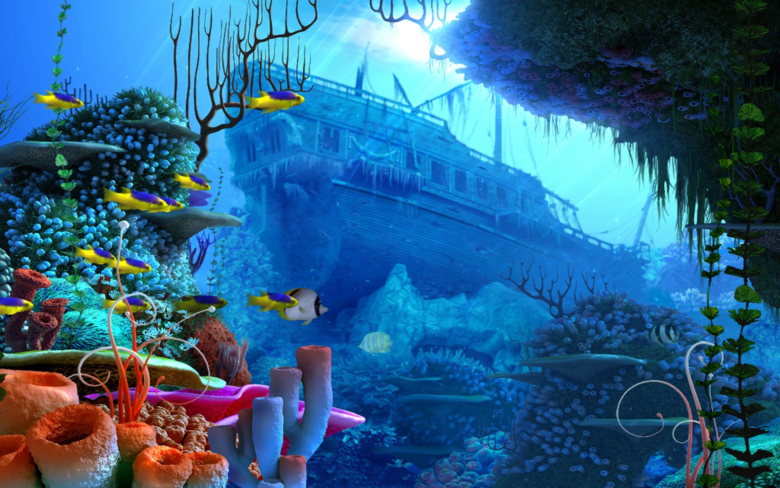 2560x1600 Underwater Wallpapers - Full HD wallpaper search