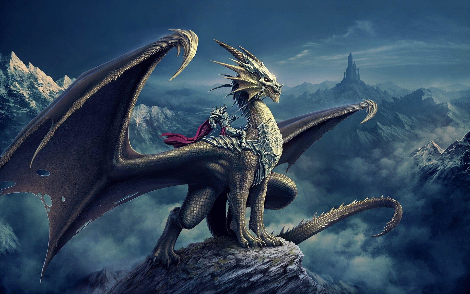 Blue dragon wallpaper hd 70 images 1920x1200 3d dragon knight fantasy wallpaper 2586 wallpaper best wallpaper hd voltagebd Gallery