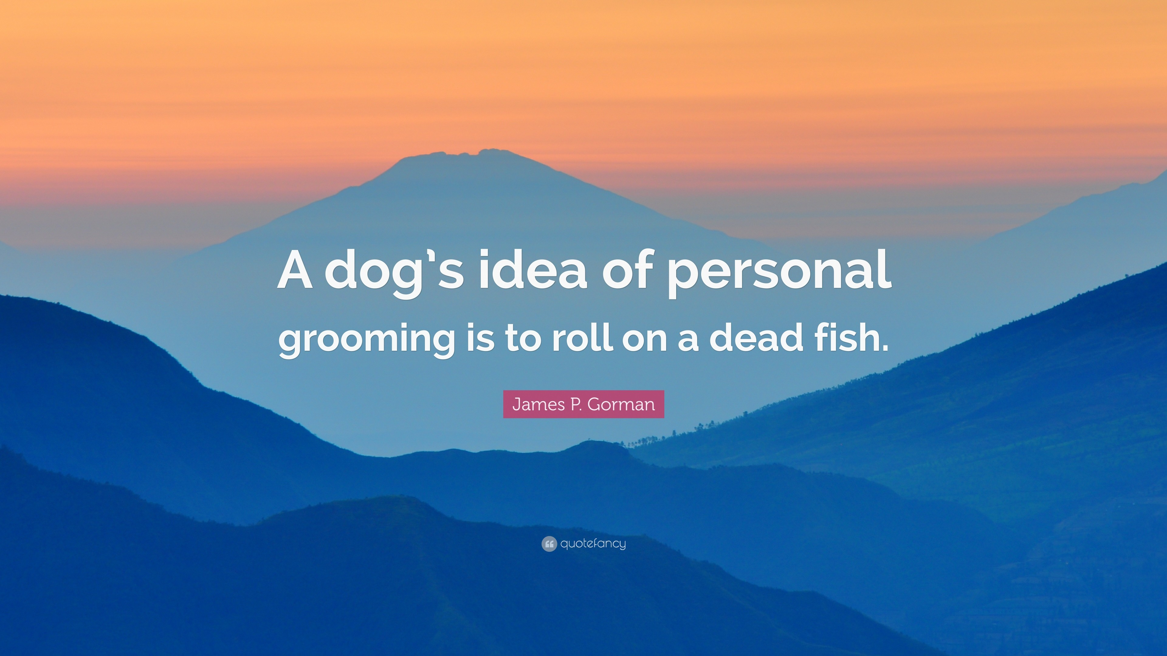 "3840x2160 James P. Gorman Quote: ""A dog's idea of personal grooming is to roll"