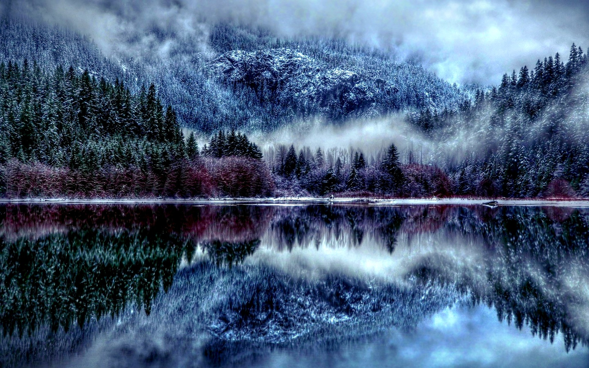 28   Great Fantasy Winter Forest for Fantasy Winter Forest Wallpaper  117dqh