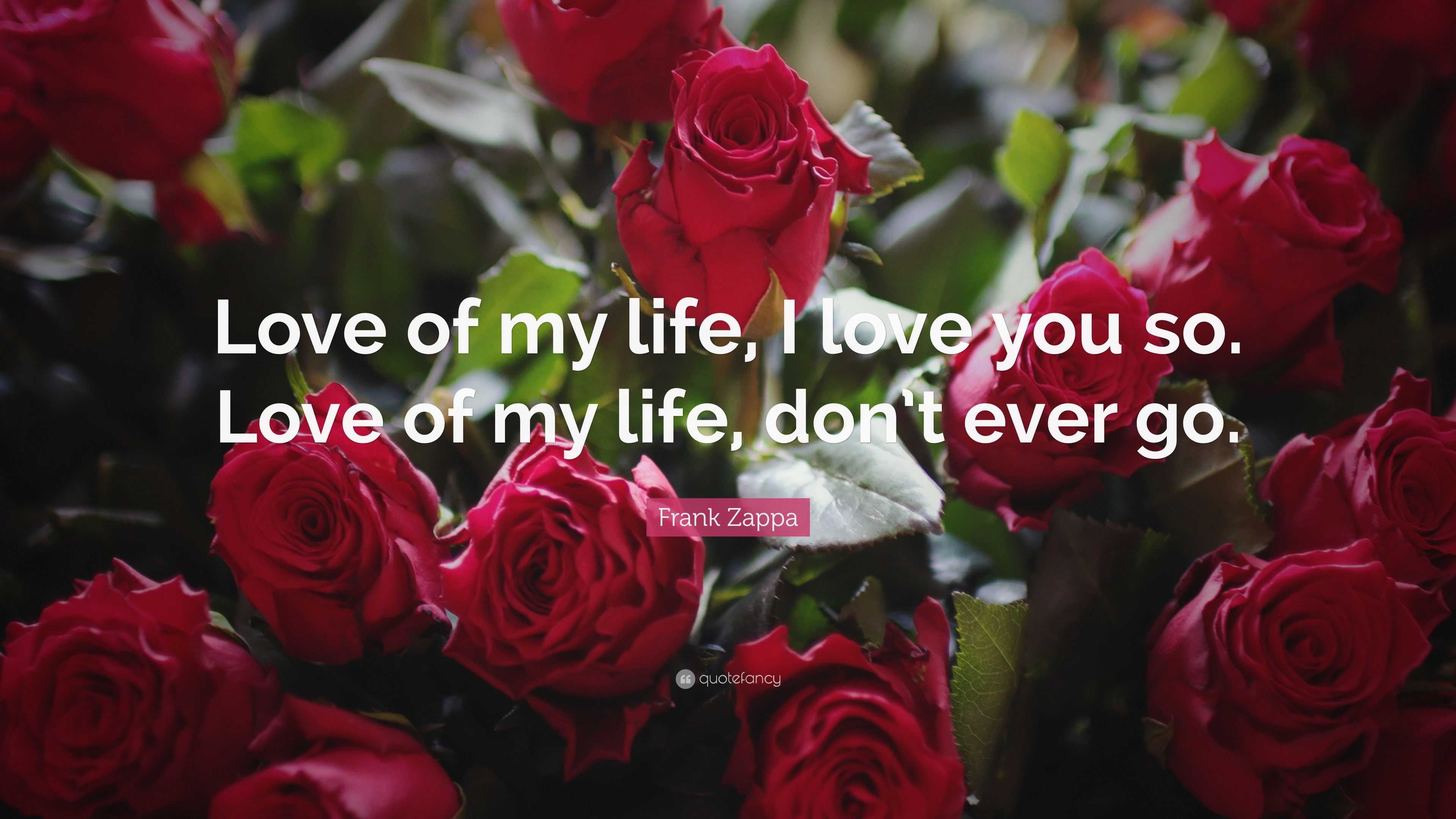 "3840x2160 Love You Quotes: ""Love of my life, I love you so. Love"