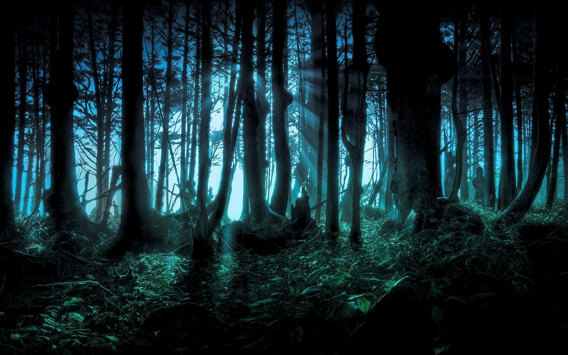 Cool dark background 53 images - Nature wallpaper dark ...
