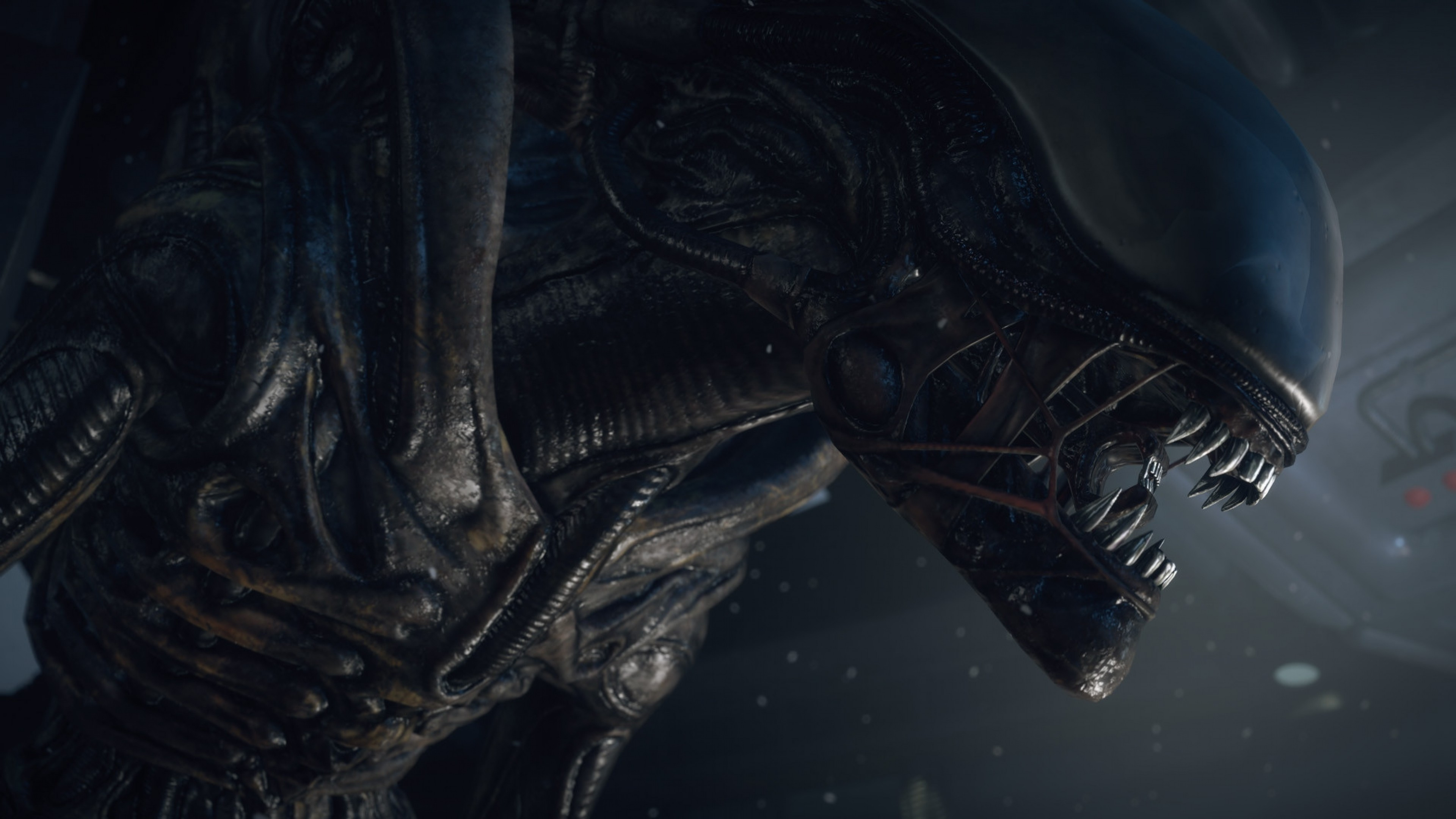 3840x2160 Preview wallpaper alien isolation, pc, playstation 3, playstation 4, xbox  360,