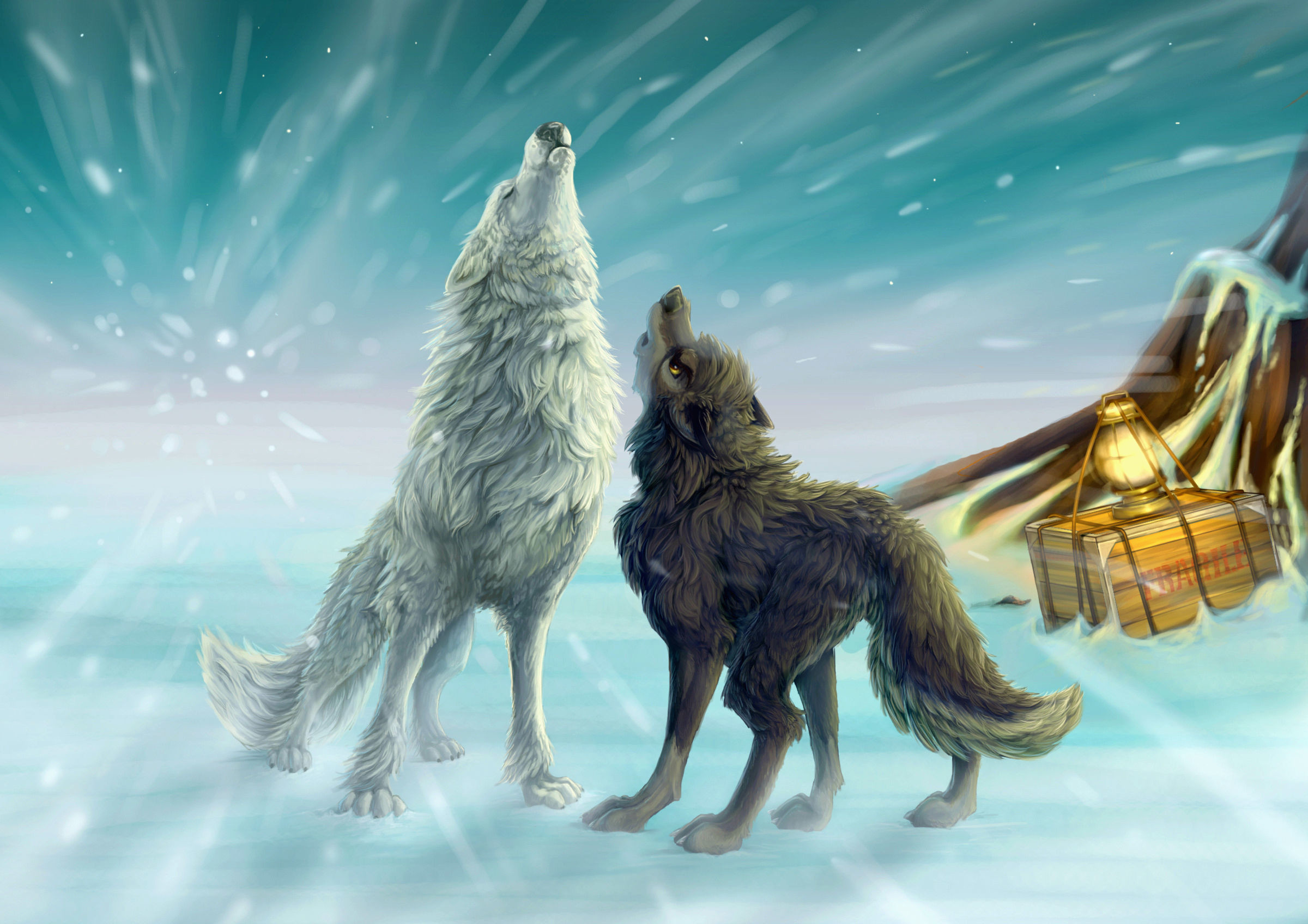 2400x1696 cartoon wolf pictures wallpaper