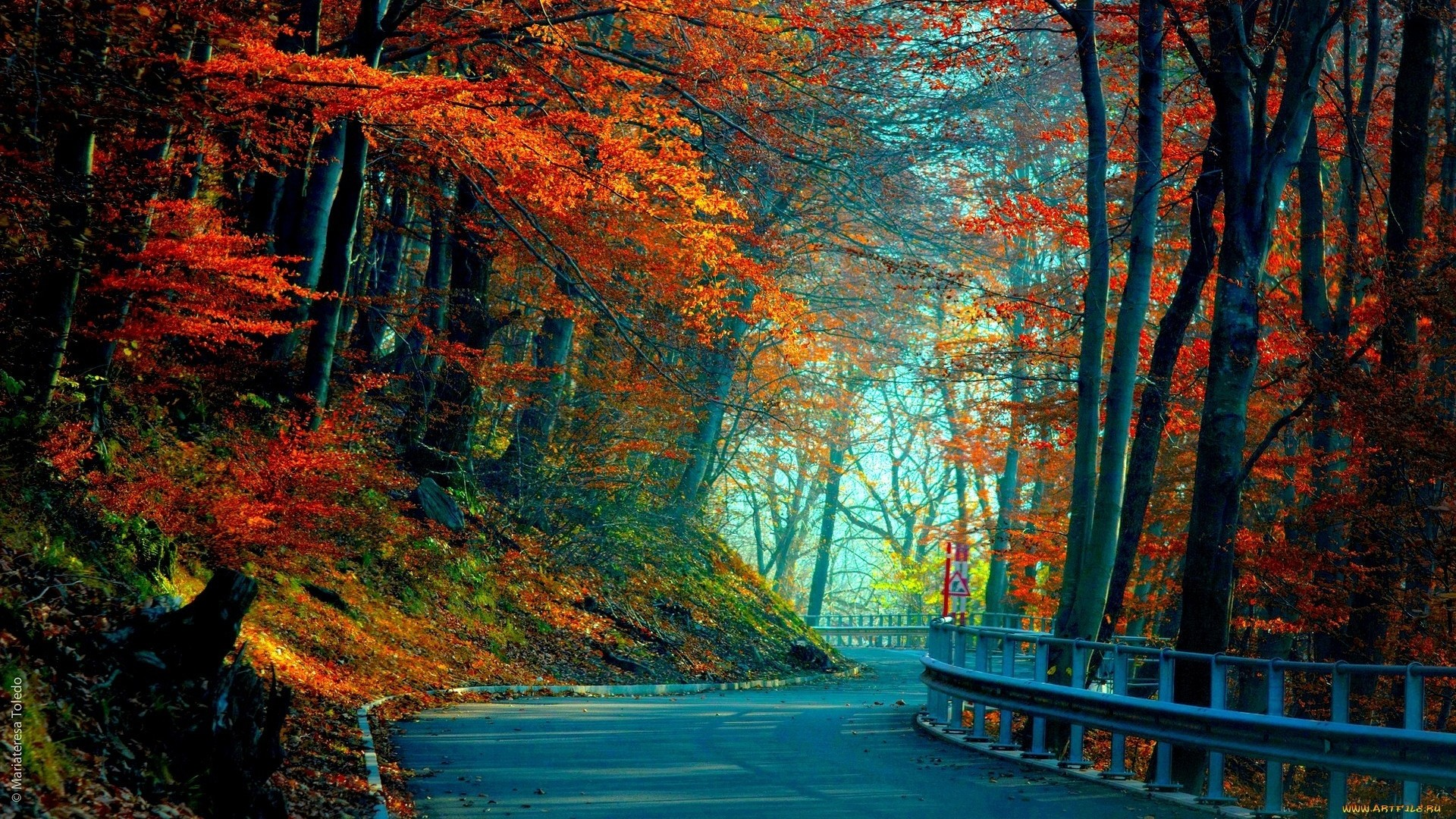 1920x1080 ... Background Full HD 1080p.  Wallpaper autumn, road, leaves