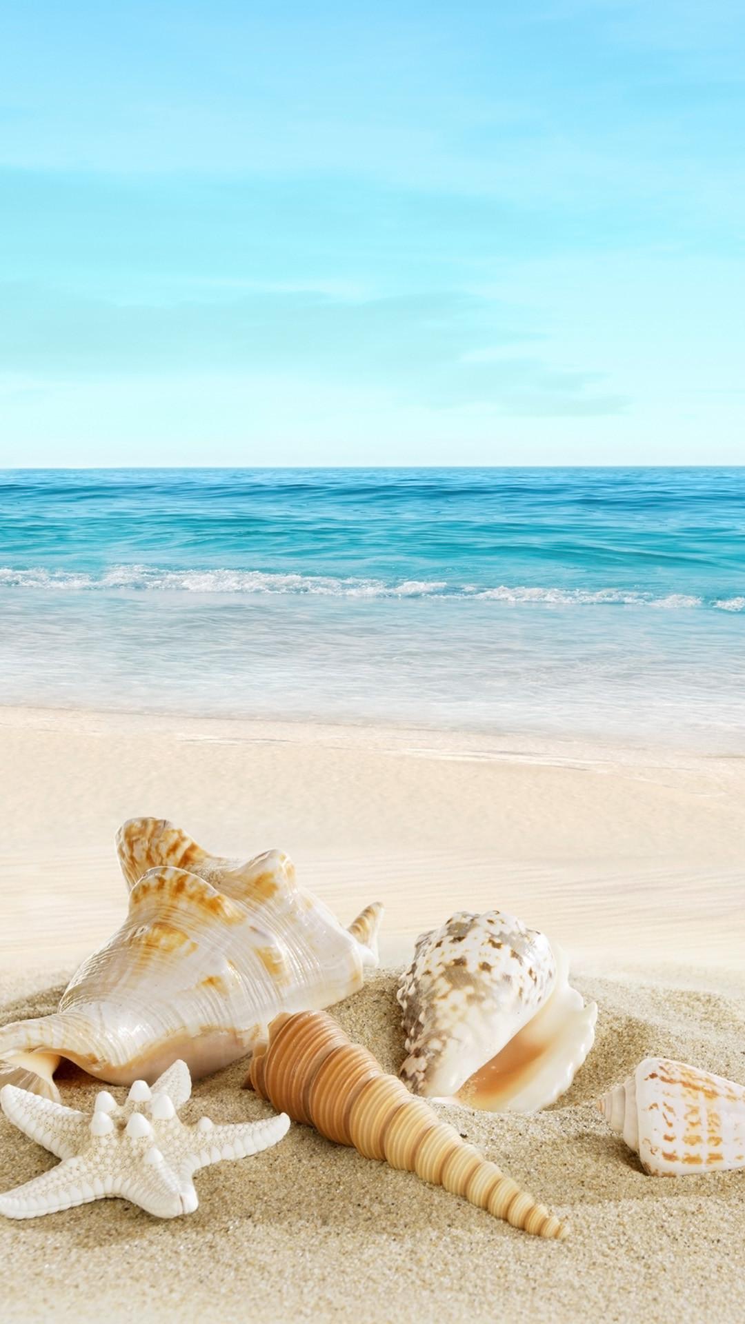 1080x1920 Nature Sunny Sea Shell Beach IPhone 6 Wallpaper