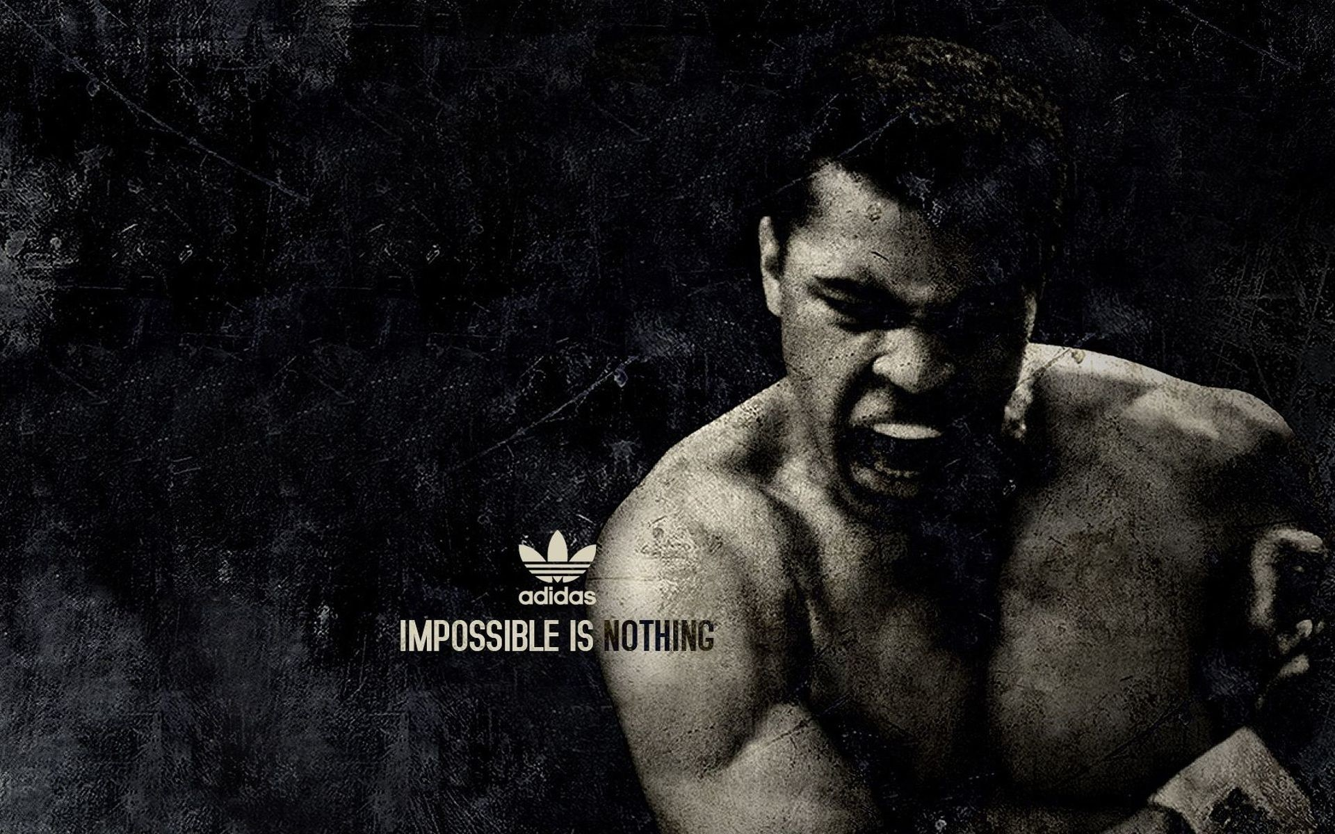 1920x1200 MMA Wallpapers and Desktop Backgrounds Free Download. Page 0