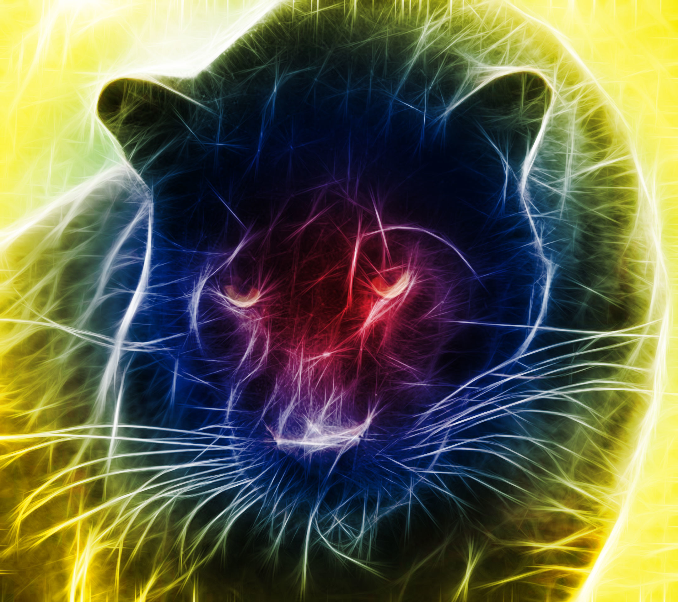 2160x1920 Abstract black panther