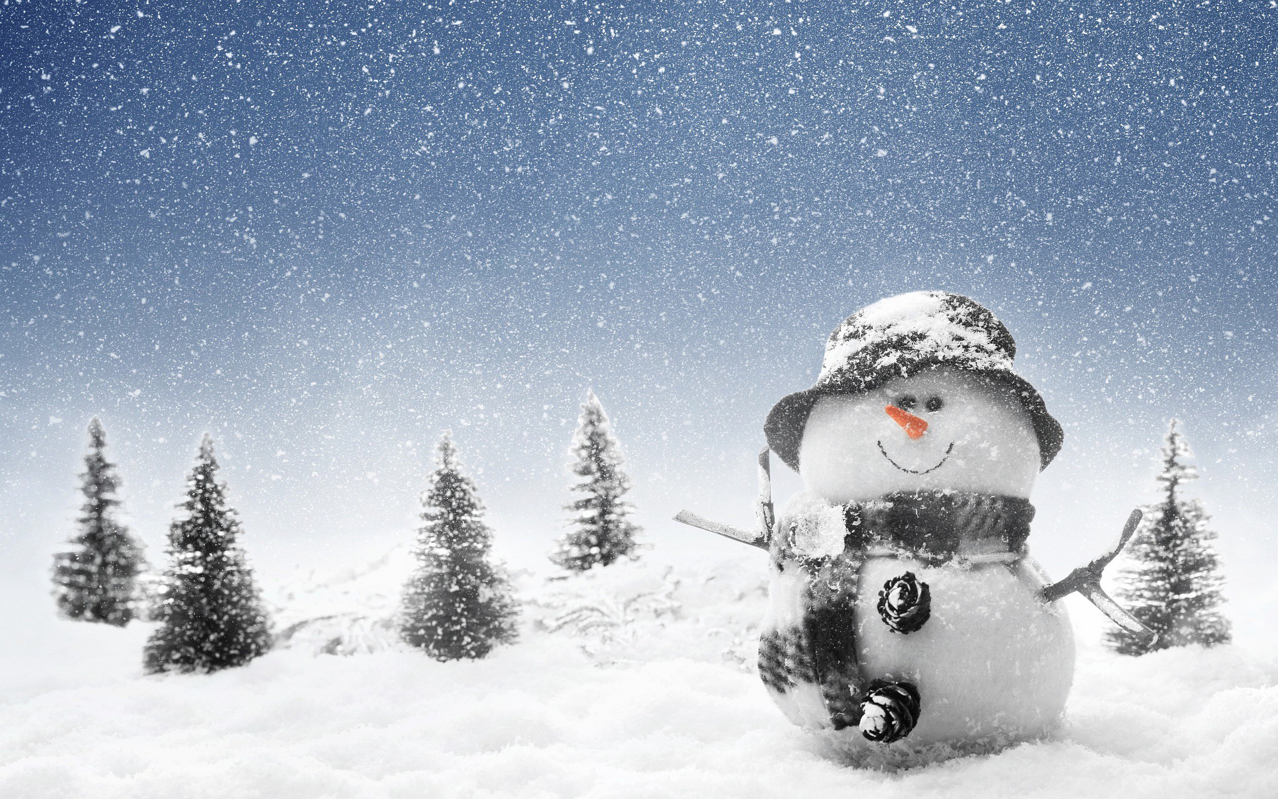 2560x1600 Winter Snowman Wallpapers Pictures Photos Images #3702