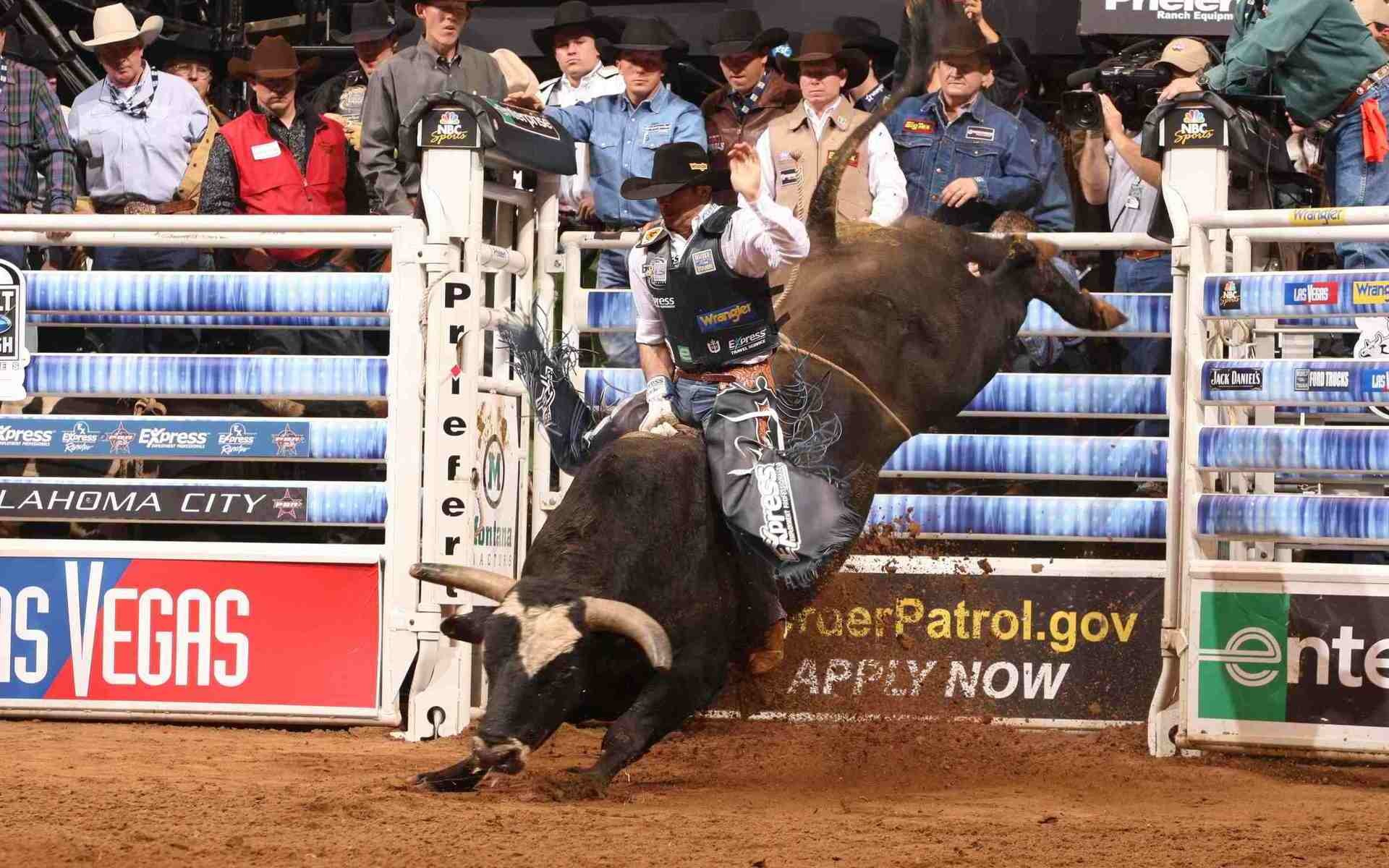 1920x1200 Pro Bull Riding - PBR: Built Ford Tough Series, October Rodeo Tickets,  10/28/2017 at 6:45 pm | SeatGeek